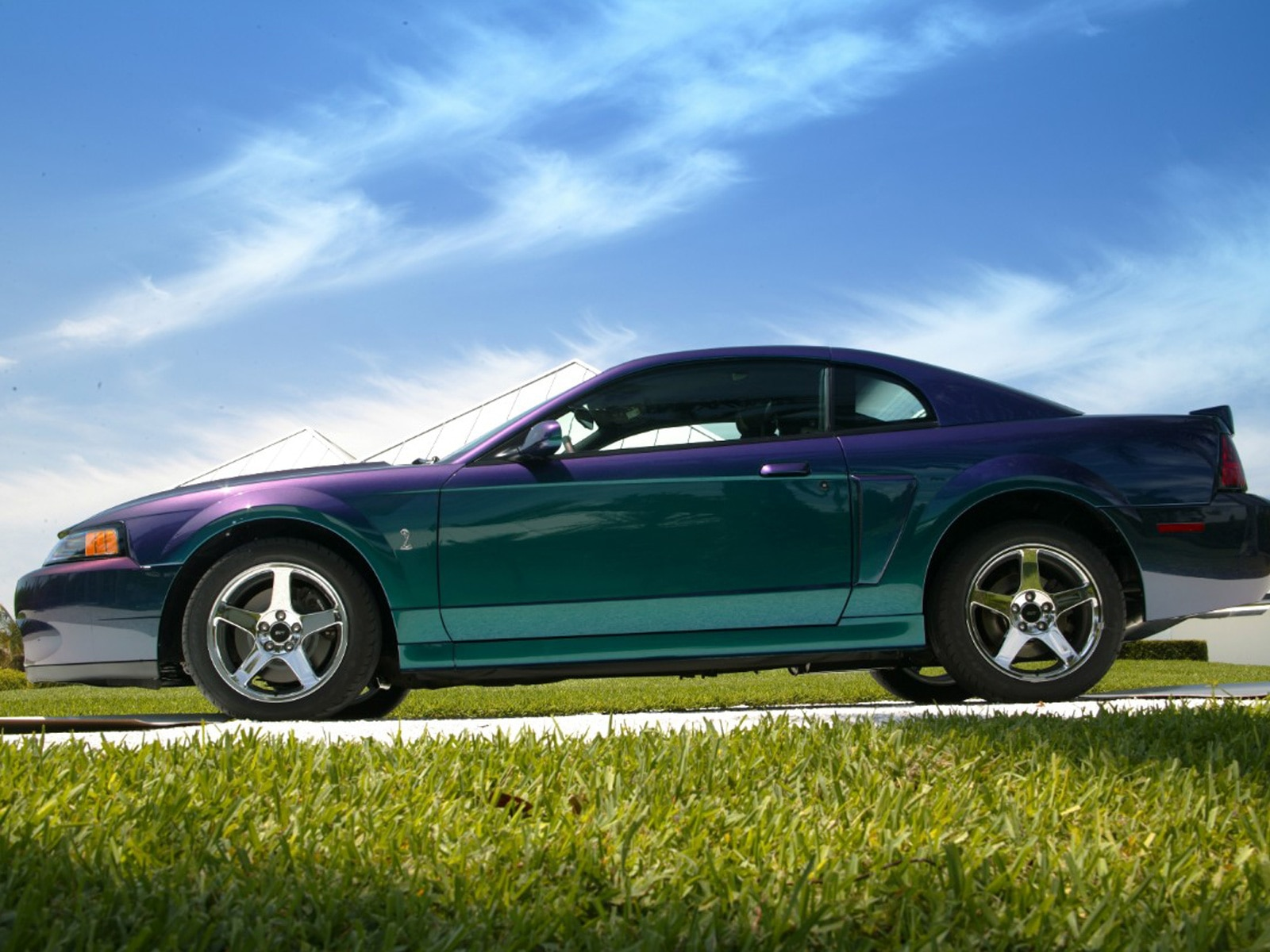 1310 2004 ford mustang cobra mystichrome