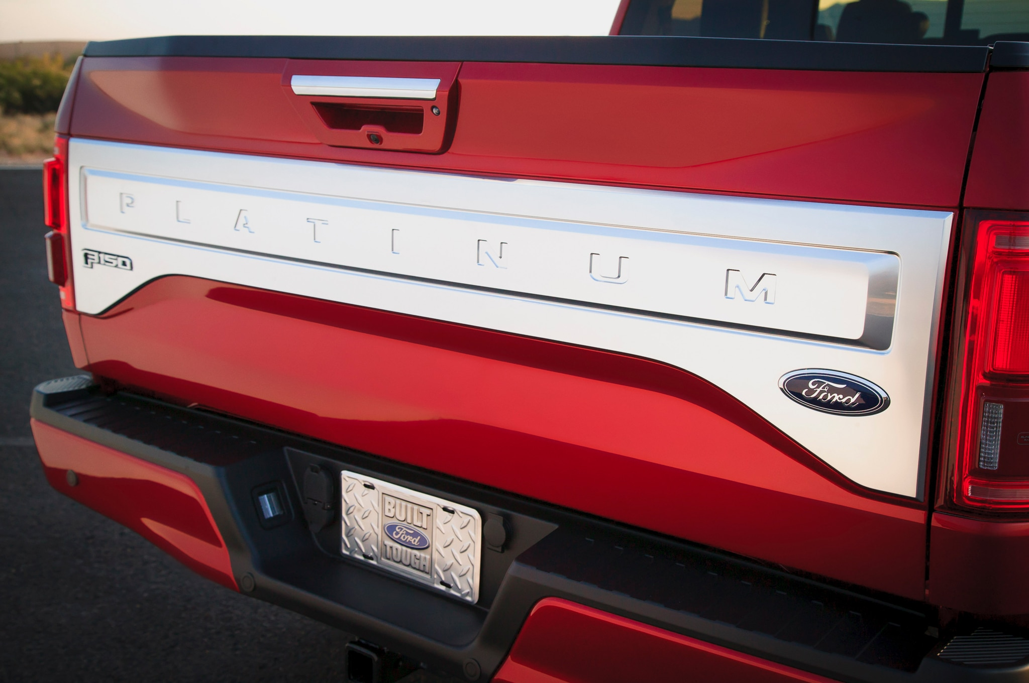 Ford F150 Tailgate For Sale