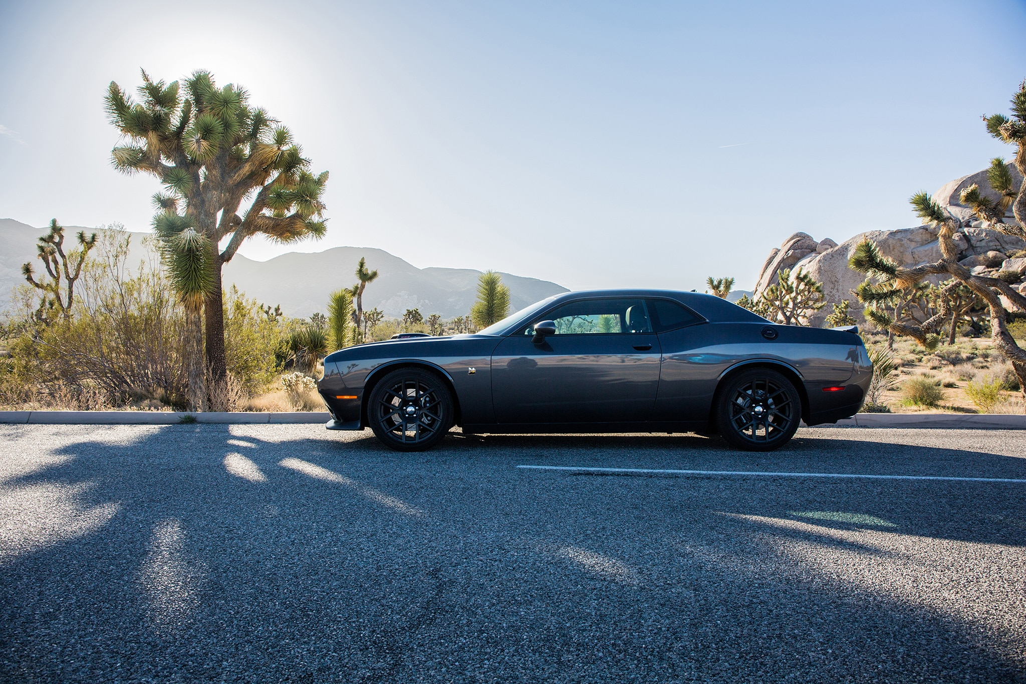 2017 Dodge Challenger T/A and Charger Daytona Add Retro Flair, More ...