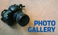 All_stars_photo_galleries_200