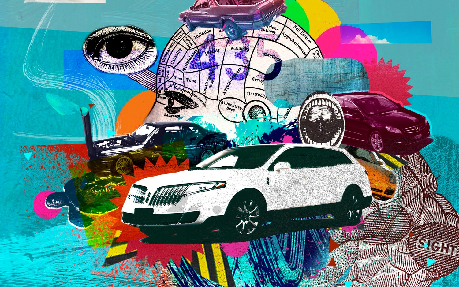 Senses Illustration Cropped