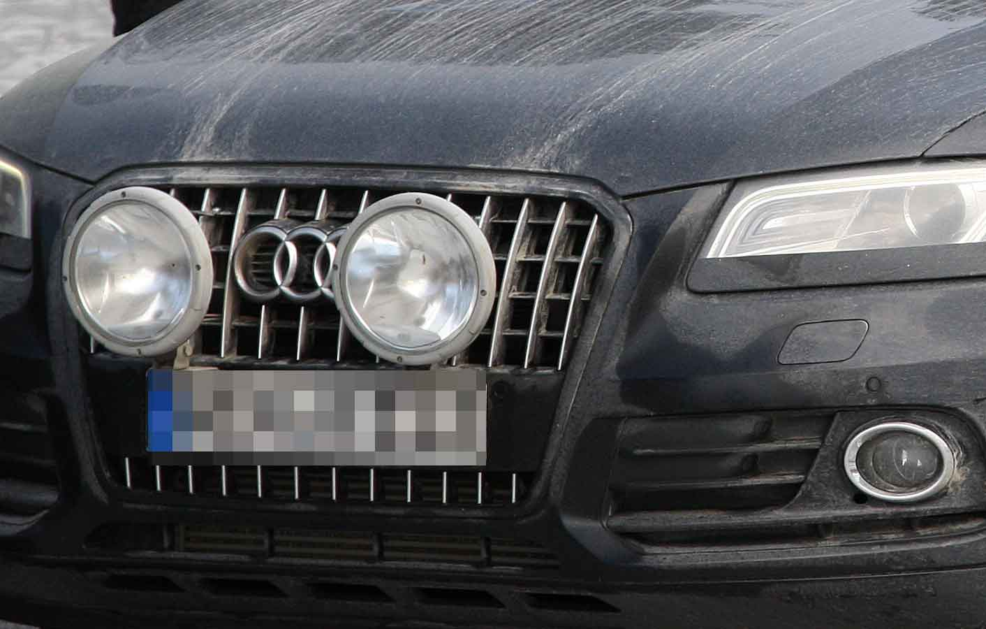 Audi Q5 Grille Cropped