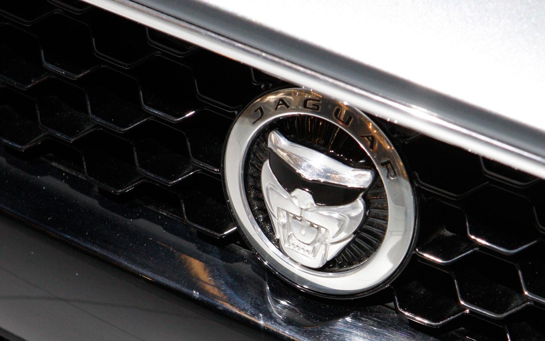 Jaguar Growling Face Sunglasses1