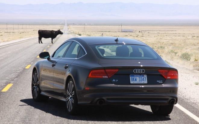 2012 Audi A7 Rear Three Quarter With Cow Utah1 660x413