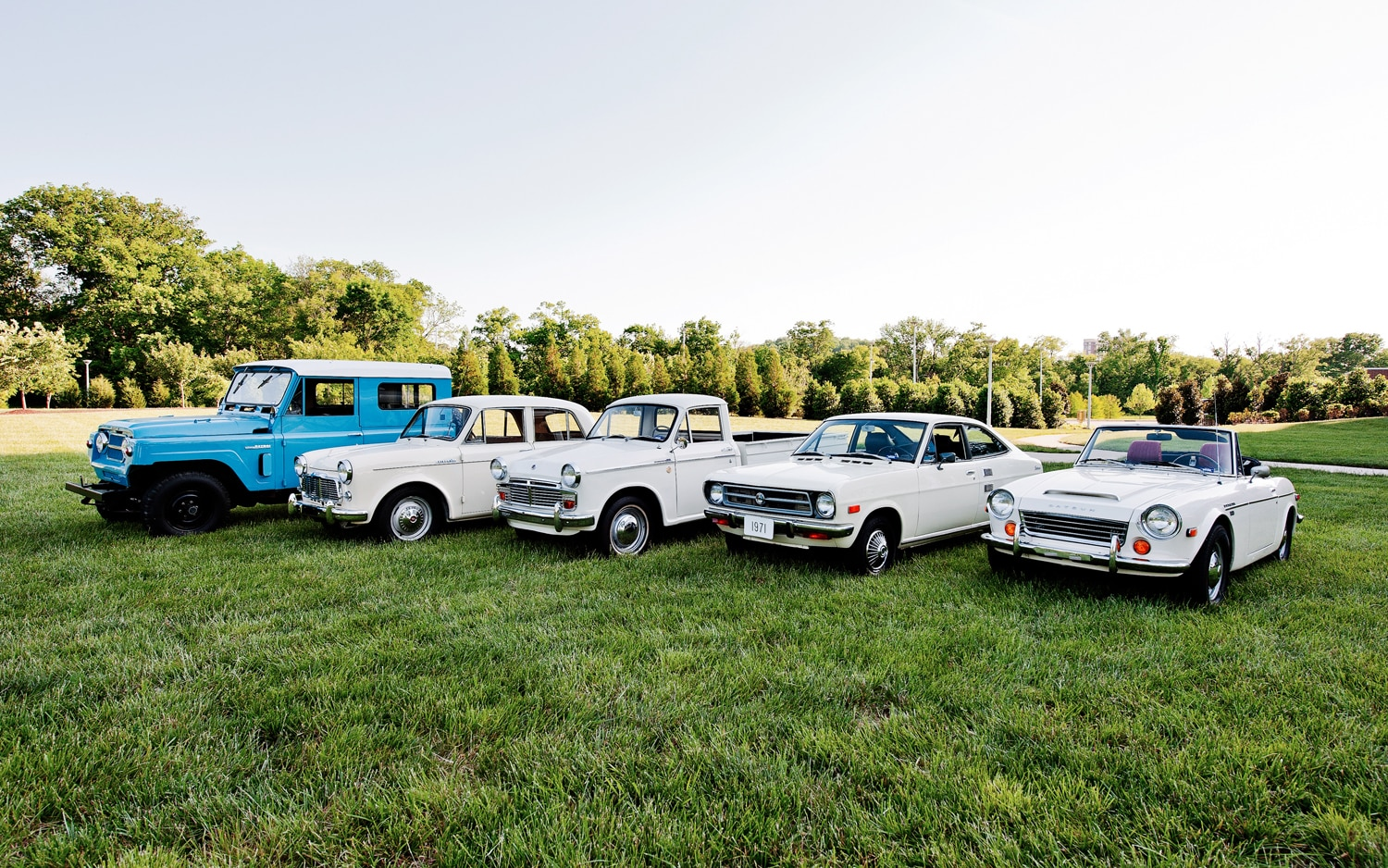 Datsun Lined Up