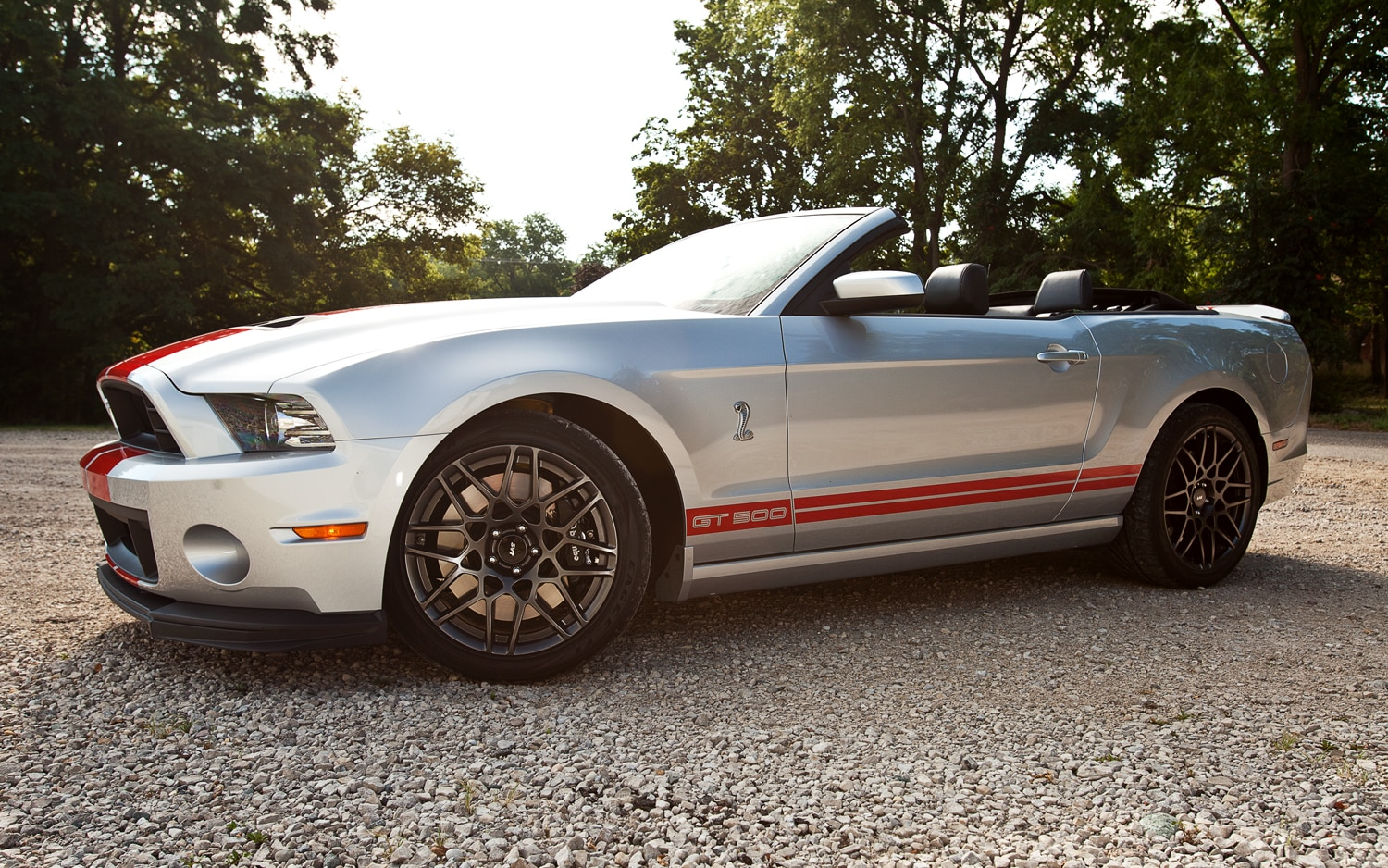 2013 Ford Shelby GT500 Convertible Left Side View1