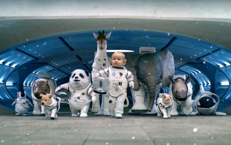 2014 Kia Sorento Baby Animals
