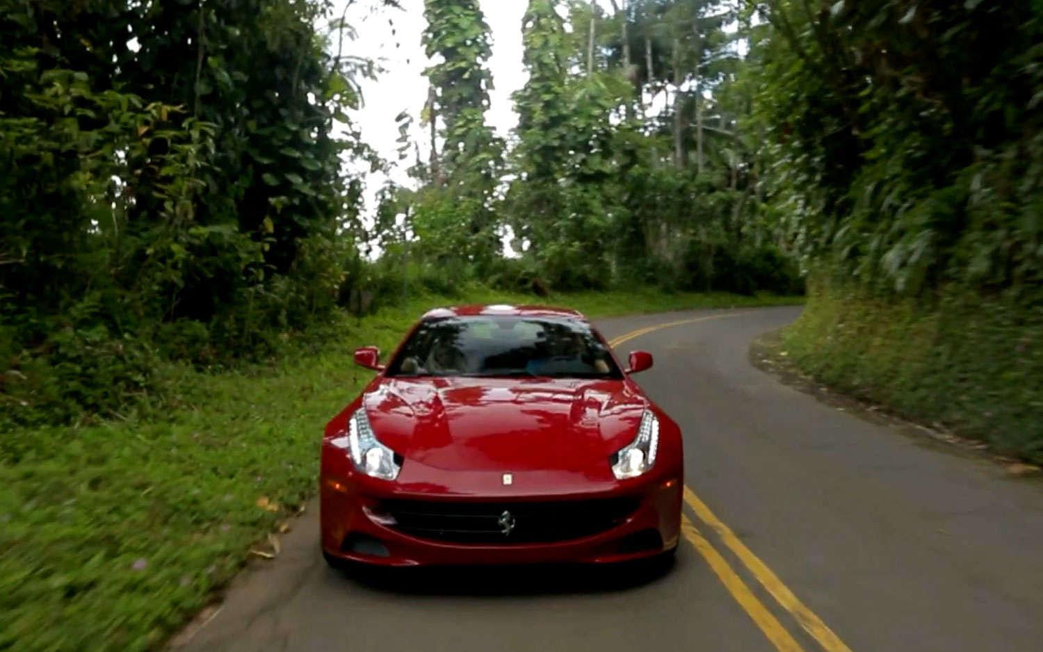 2013 Ferrari FF Front View Forest1