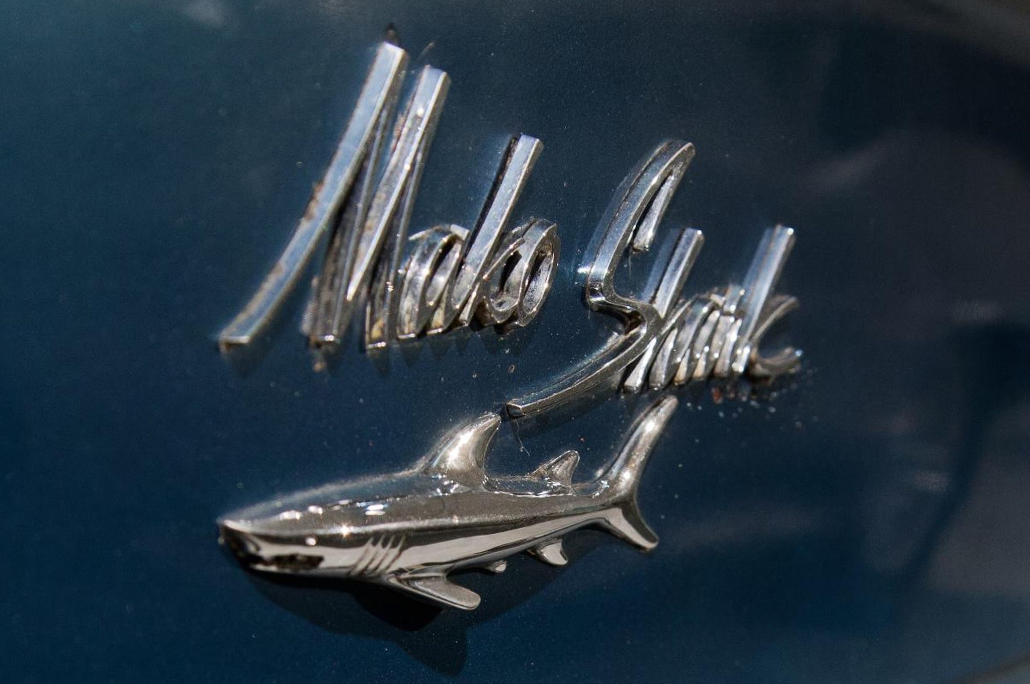 Nine Shark Cars For 2013 Shark Week