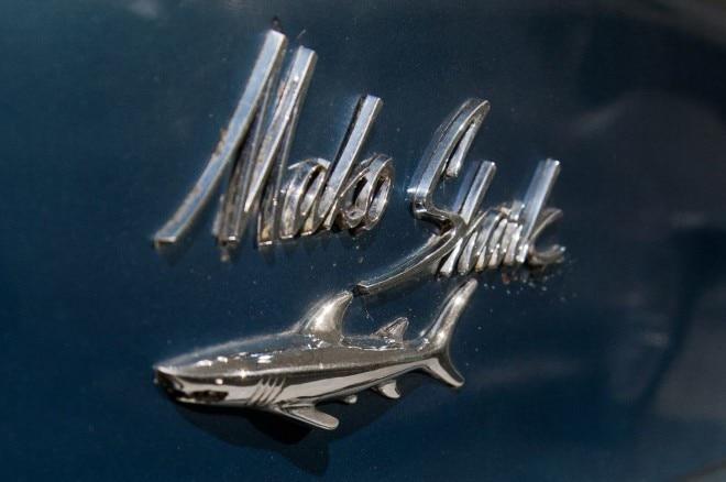Chevrolet Mako Shark Emblem Detail1 660x438