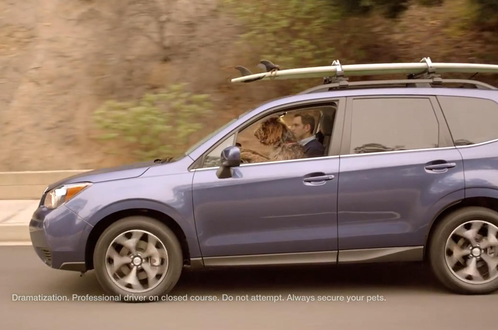 Subaru Dog Friendly 21