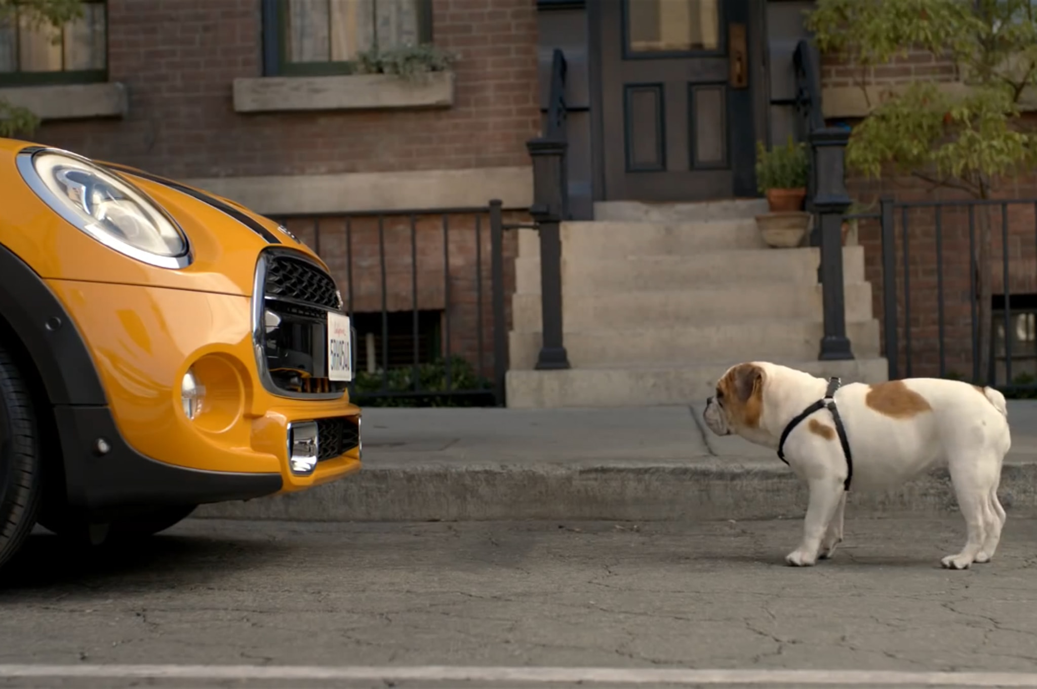 2014 Mini Cooper Bulldog Video1