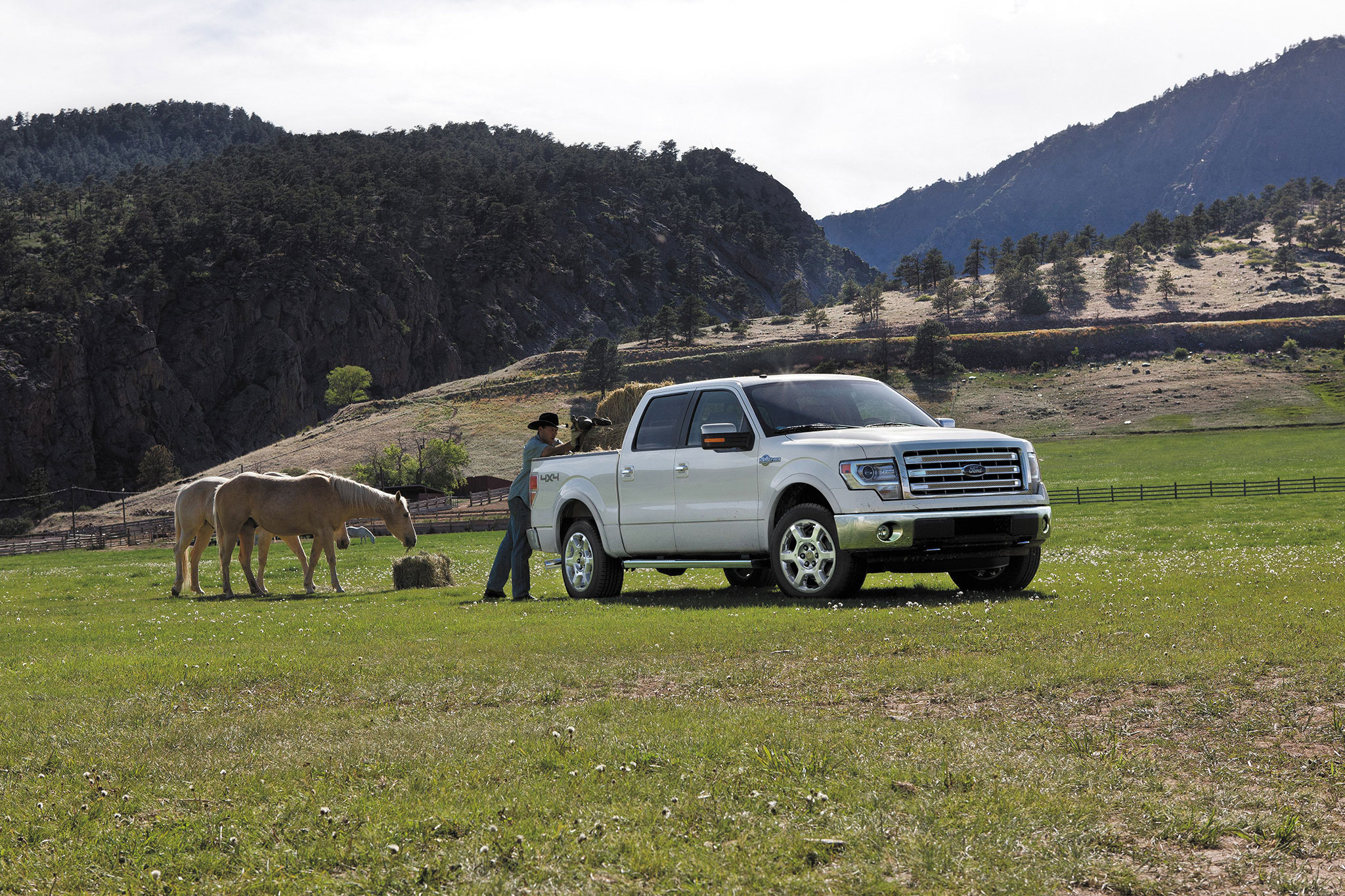 2014 Ford F 150 King Ranch Front View1