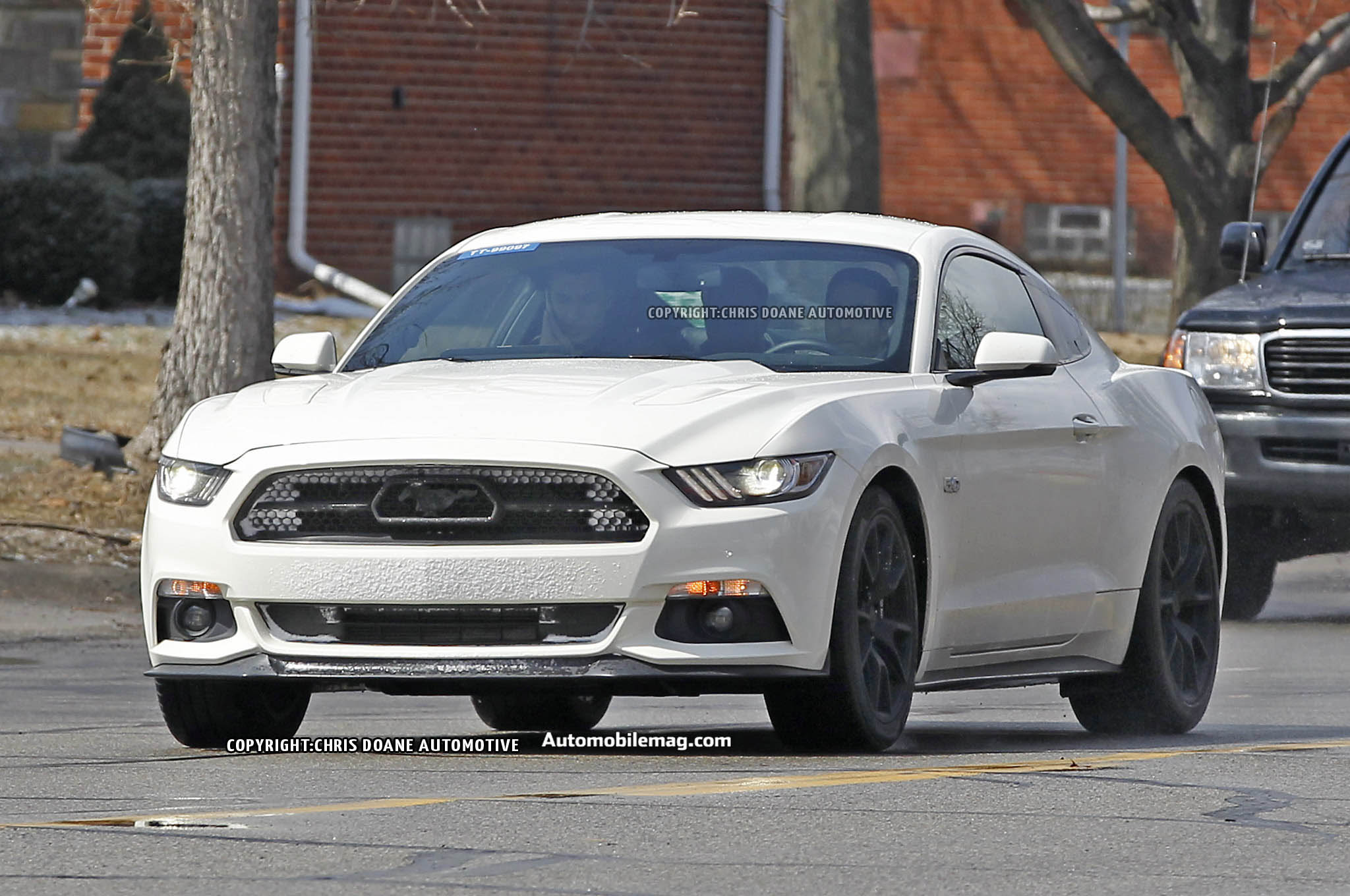 2015 Ford Mustang 50th Anniversary Spied 12 Front In Motion1