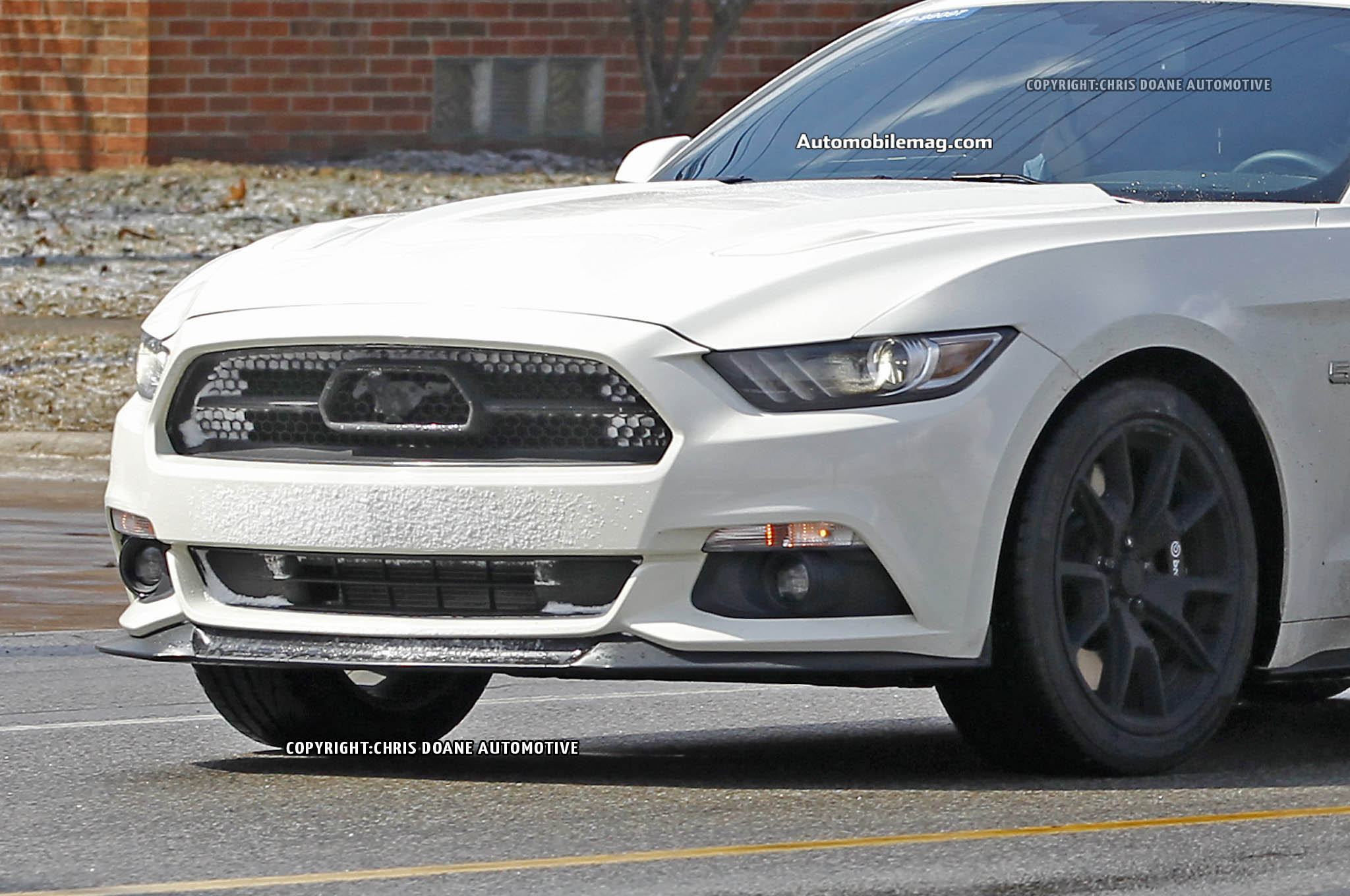 2015 ford mustang 50th anniversary spied 17 front three quarter detail. Cars Review. Best American Auto & Cars Review