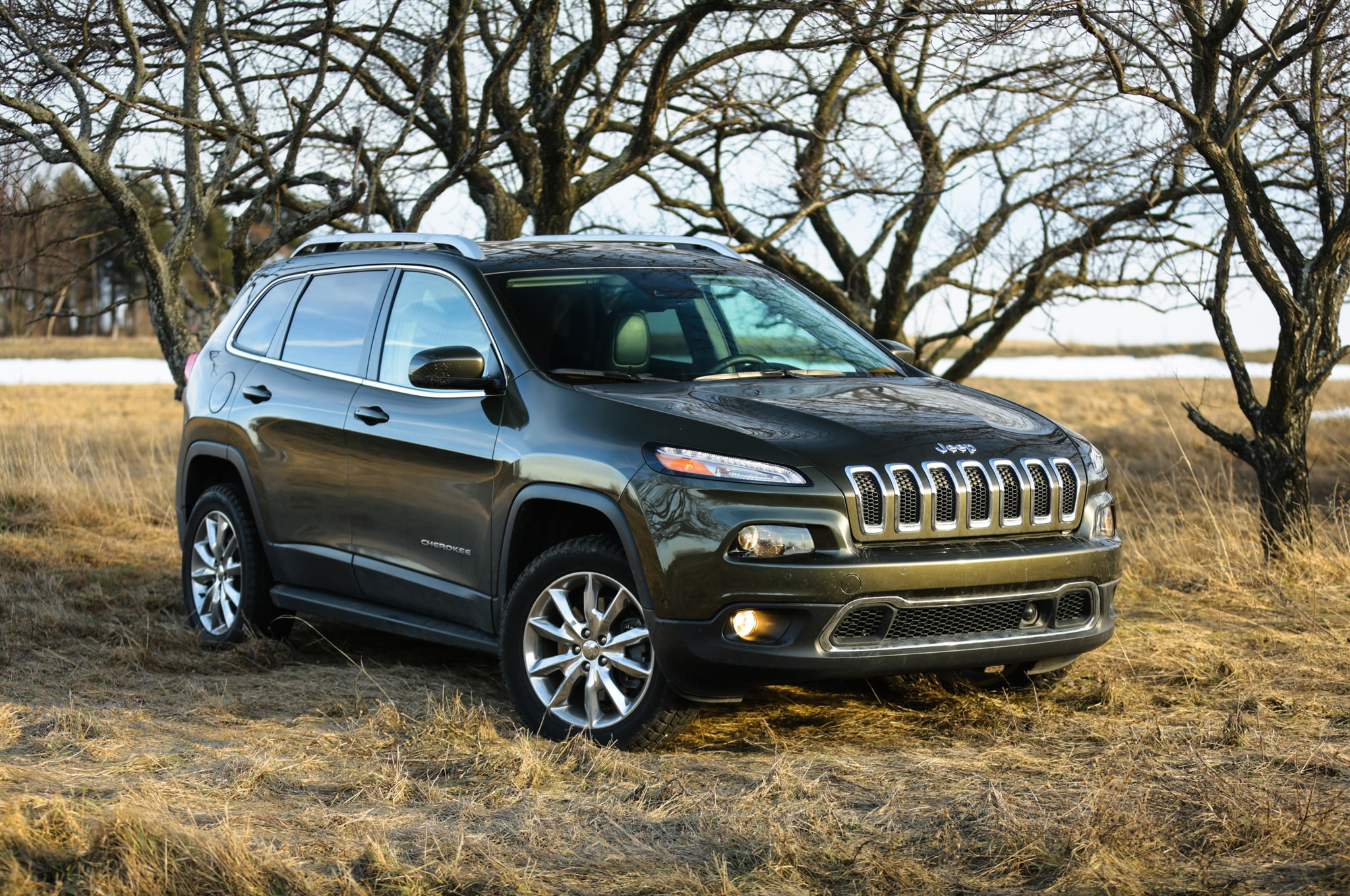 2014 jeep cherokee limited blazing a trail for our cherokee limited to follow. Black Bedroom Furniture Sets. Home Design Ideas