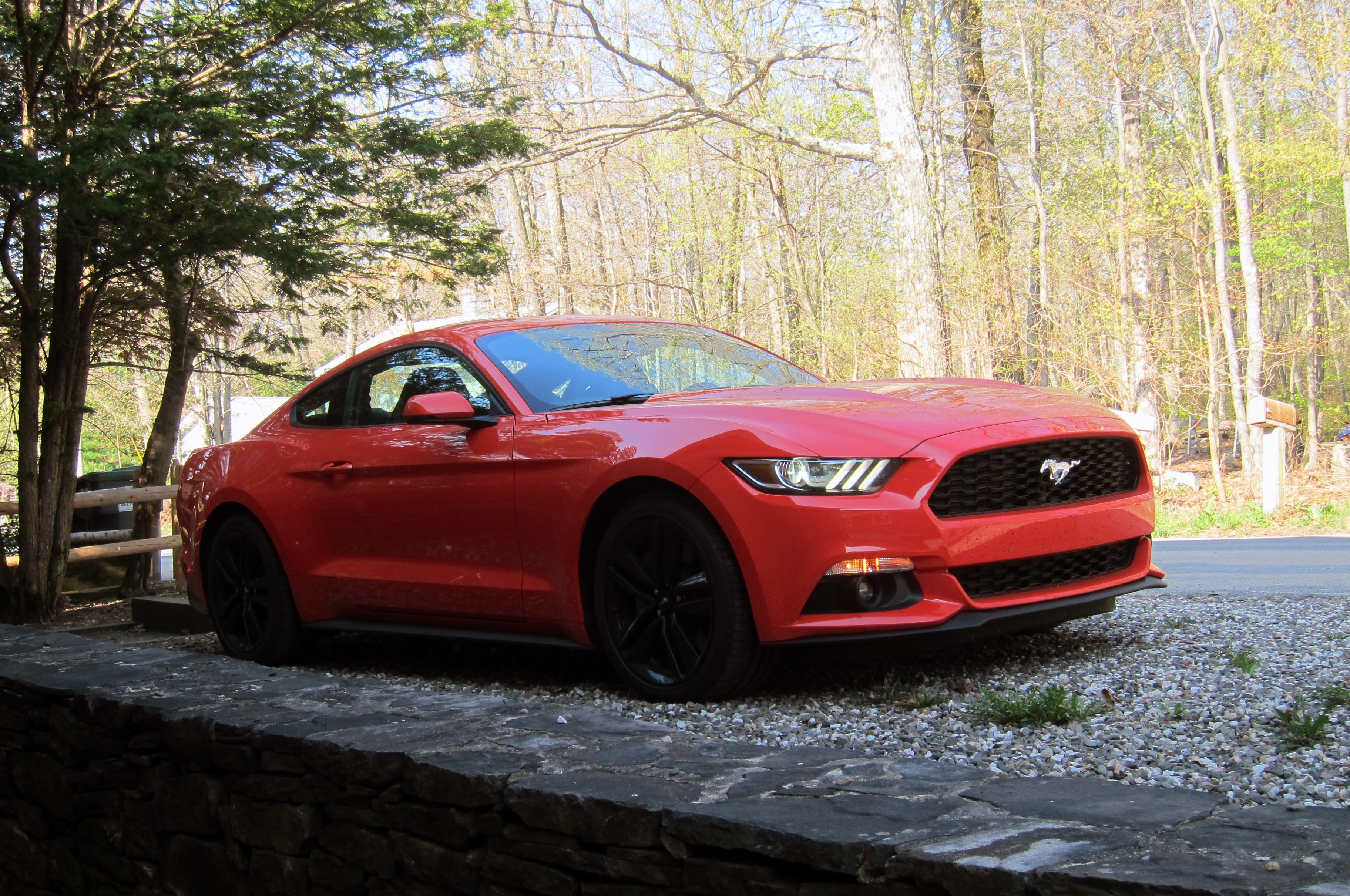 325 - 2015 Ford Mustang Ecoboost Performance Package