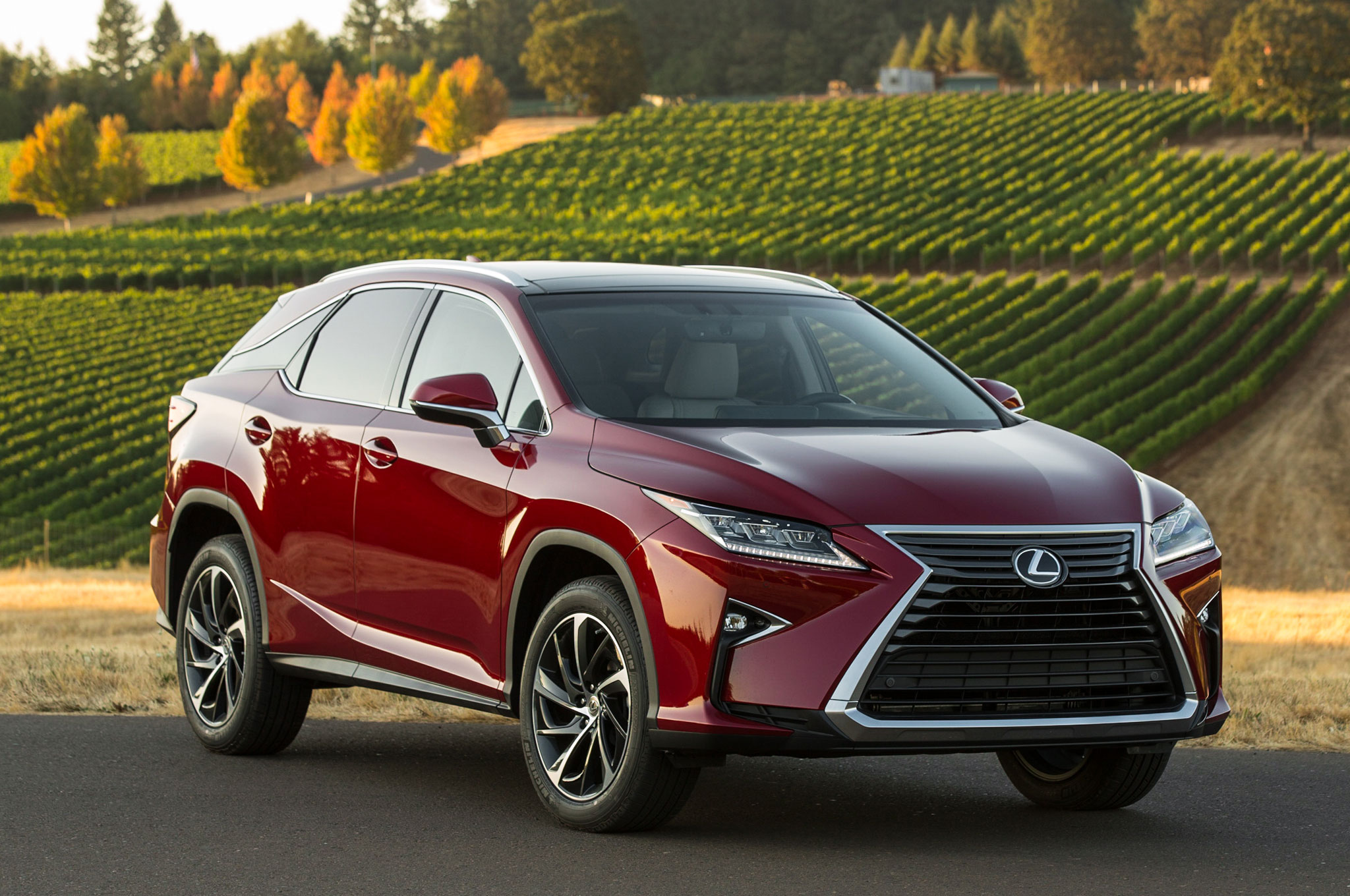 2016 lexus rx review show more sciox Gallery