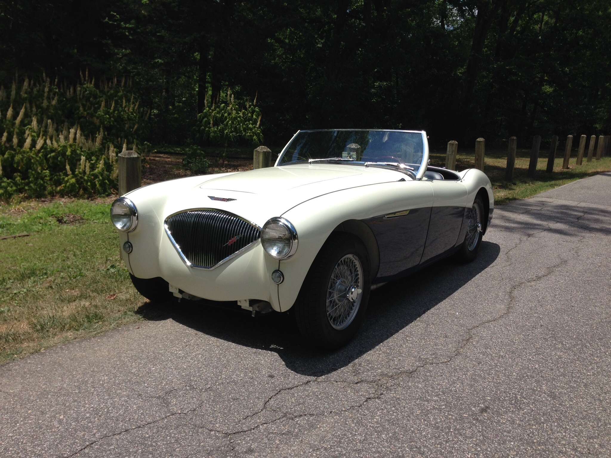1956 Austin Healey 100 Three Quarter