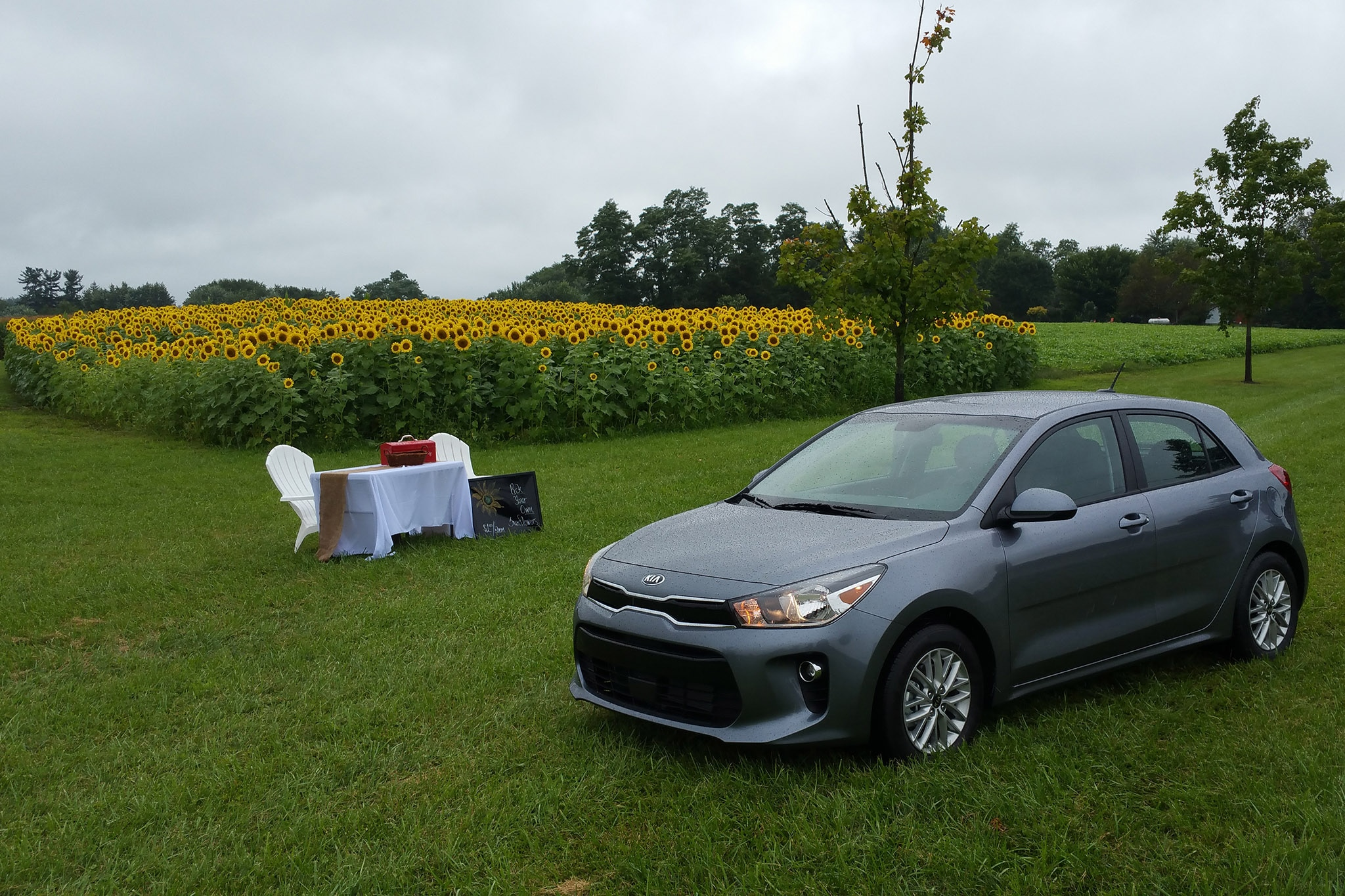 2018 kia rio hatchback. unique hatchback show more to 2018 kia rio hatchback t
