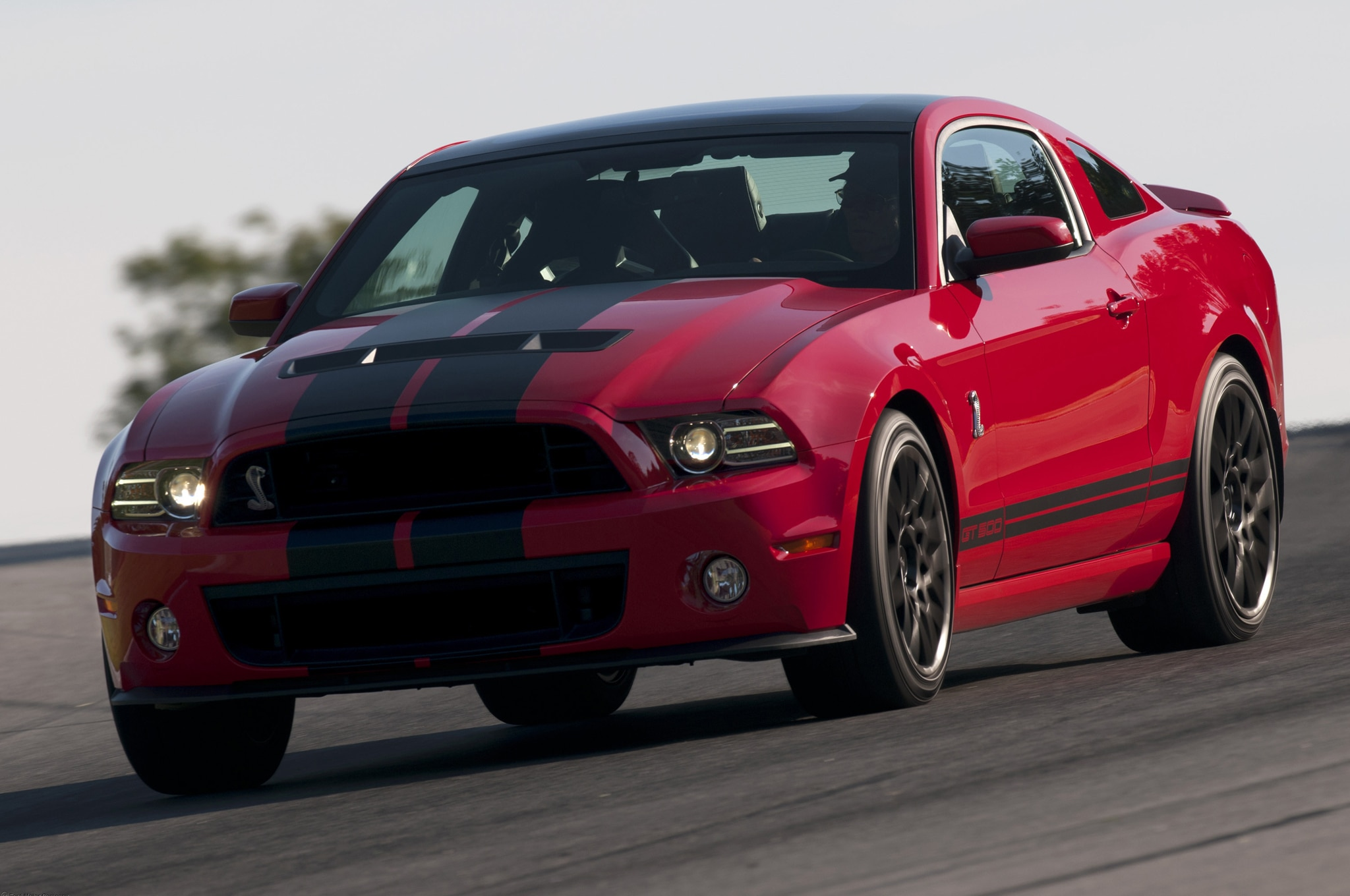 2019 Gt 500 >> 2013 Shelby GT500 Super Snake First Drive - Automobile Magazine