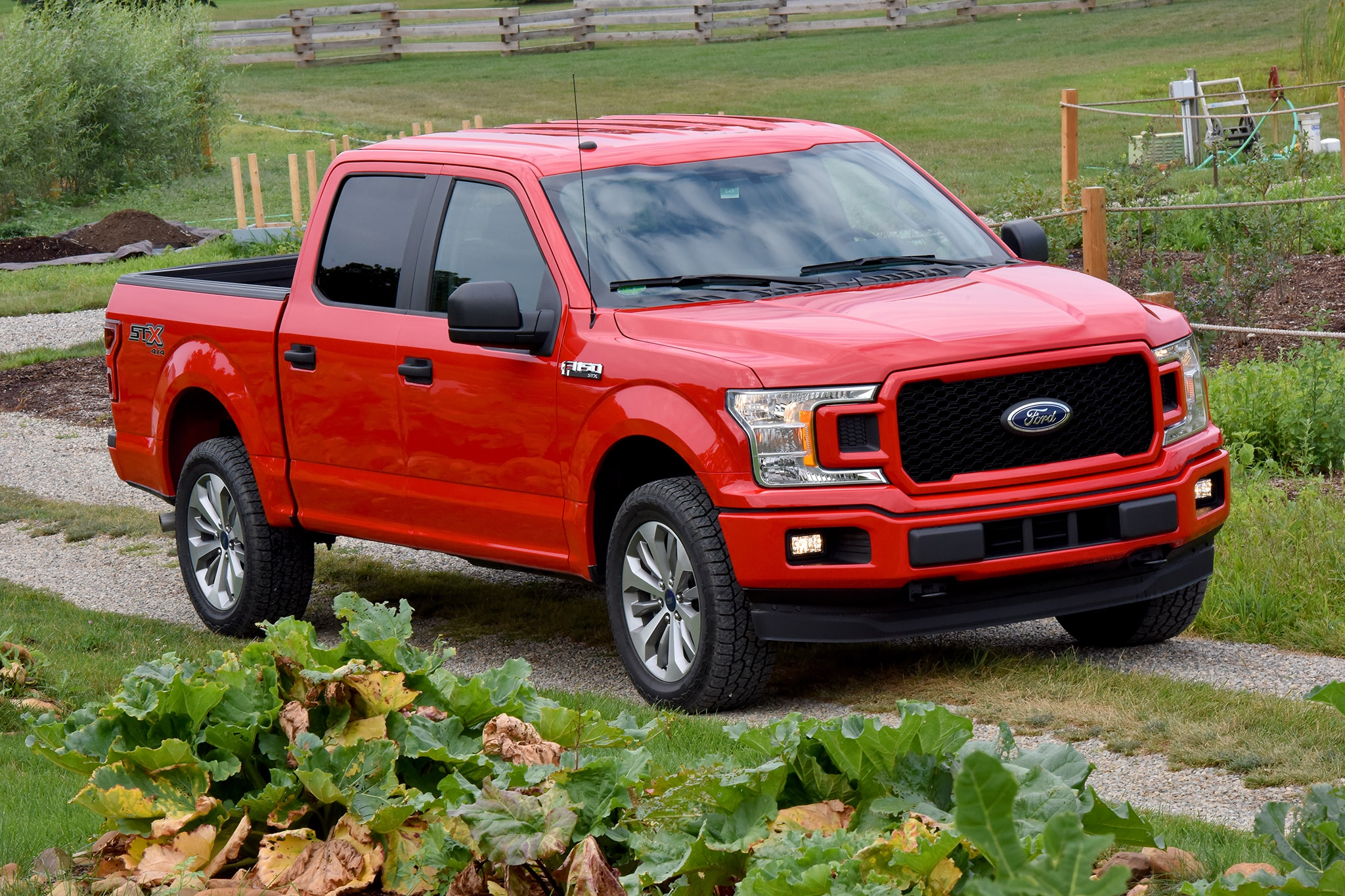 2018 Shelby Raptor Can Be Yours For 117460 Automobile Magazine 1950 S Ford Truck Long Bed 51 198