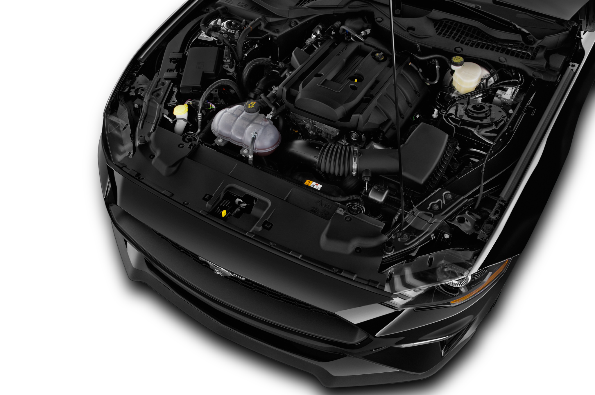 Image result for 2019 ford mustang ecoboost engine bay