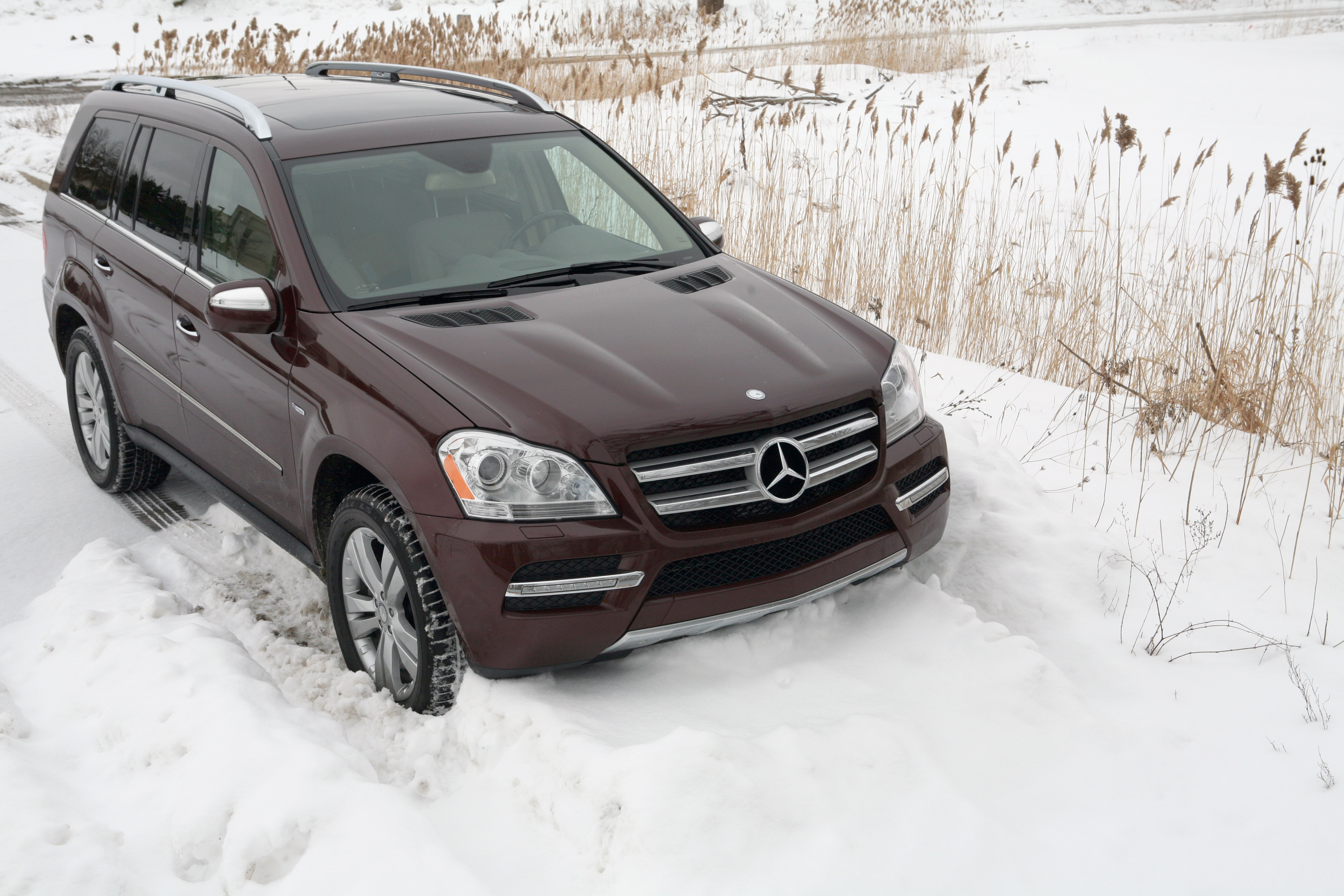 2010 Mercedes-Benz GL350 Bluetec - Mercedes Benz Fullsize