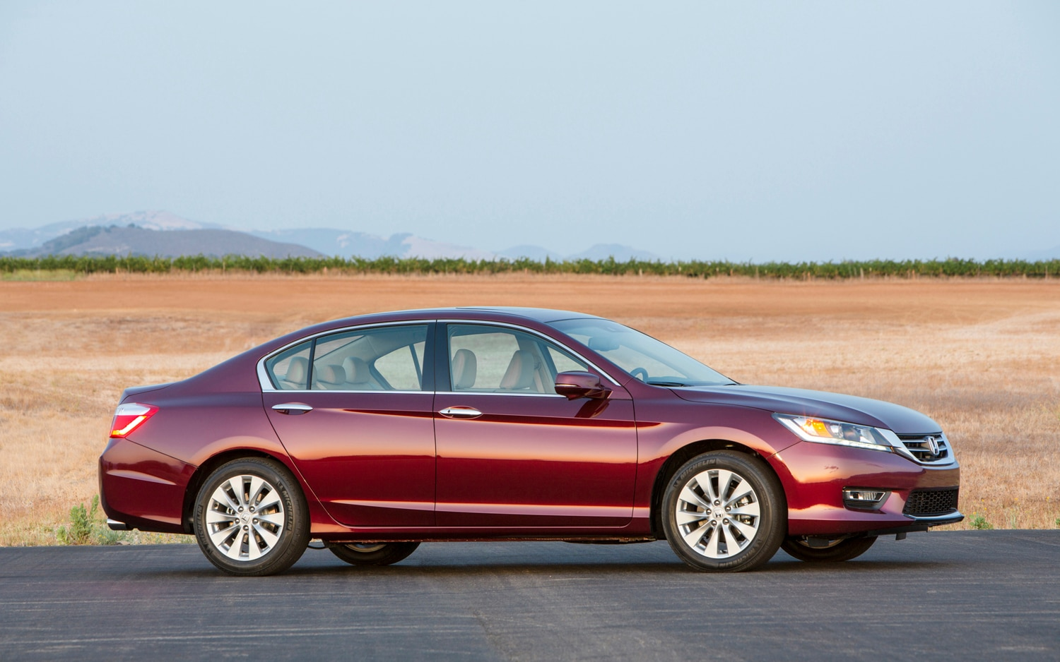 Honda Accord1
