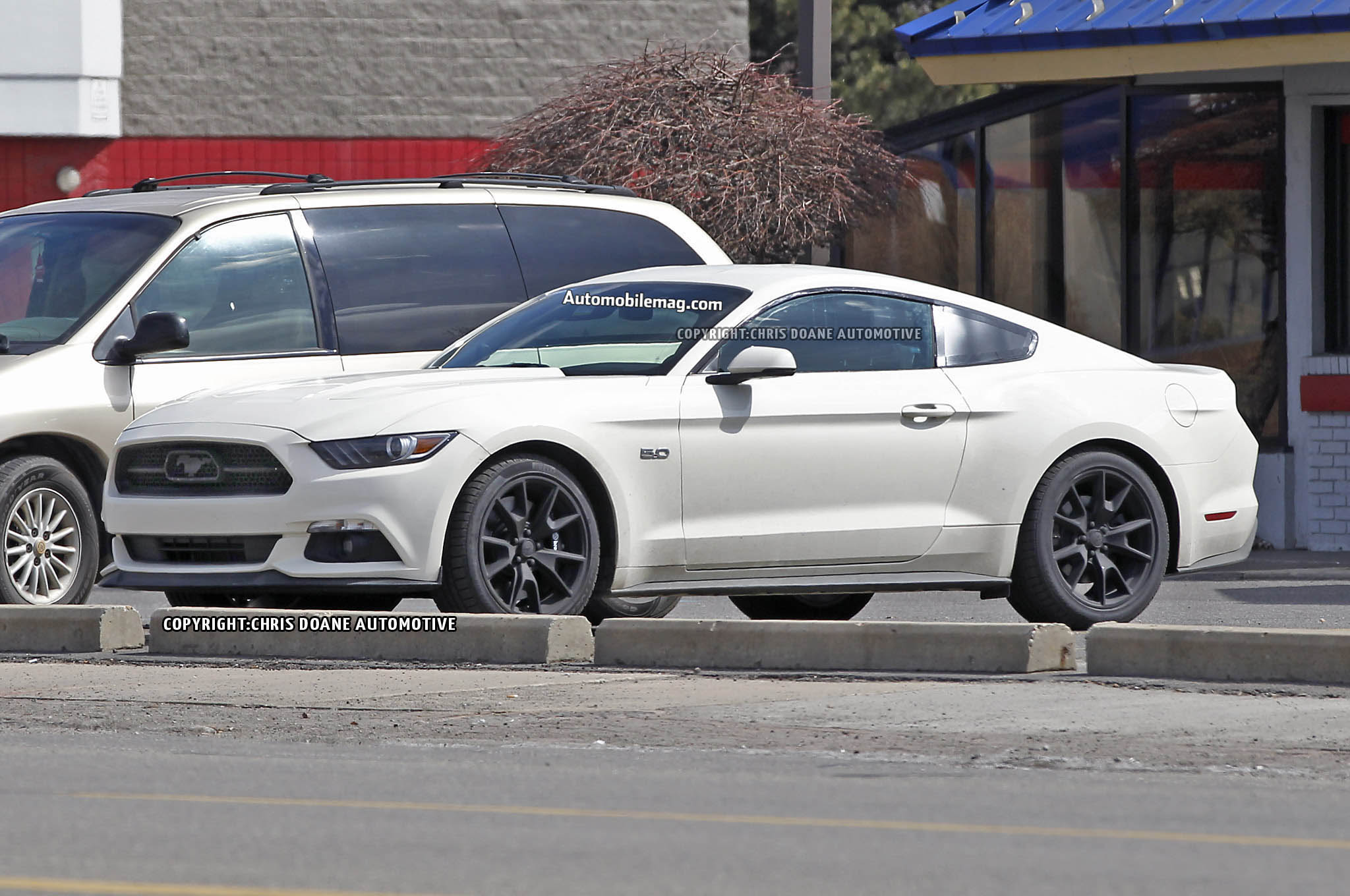 2015 Ford Mustang 50th Anniversary Edition Spied – Automobile Magazine