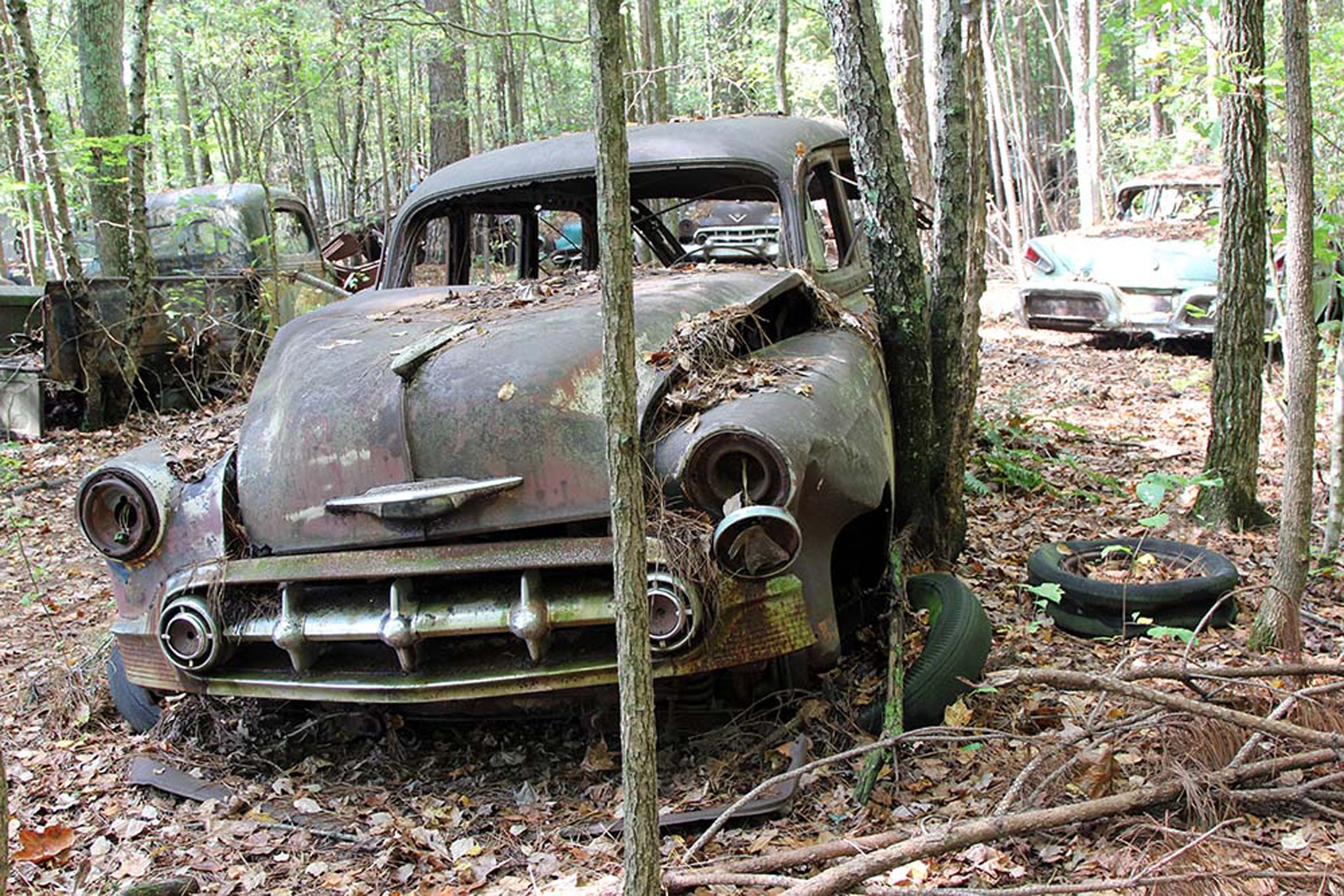 this is what 34 acres of rusting classic cars looks like. Black Bedroom Furniture Sets. Home Design Ideas