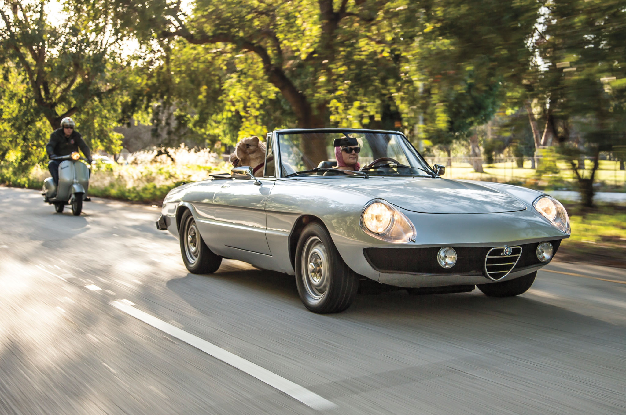 Collectible Classic Alfa Romeo Spider - Alfa romeo spider 1974 for sale