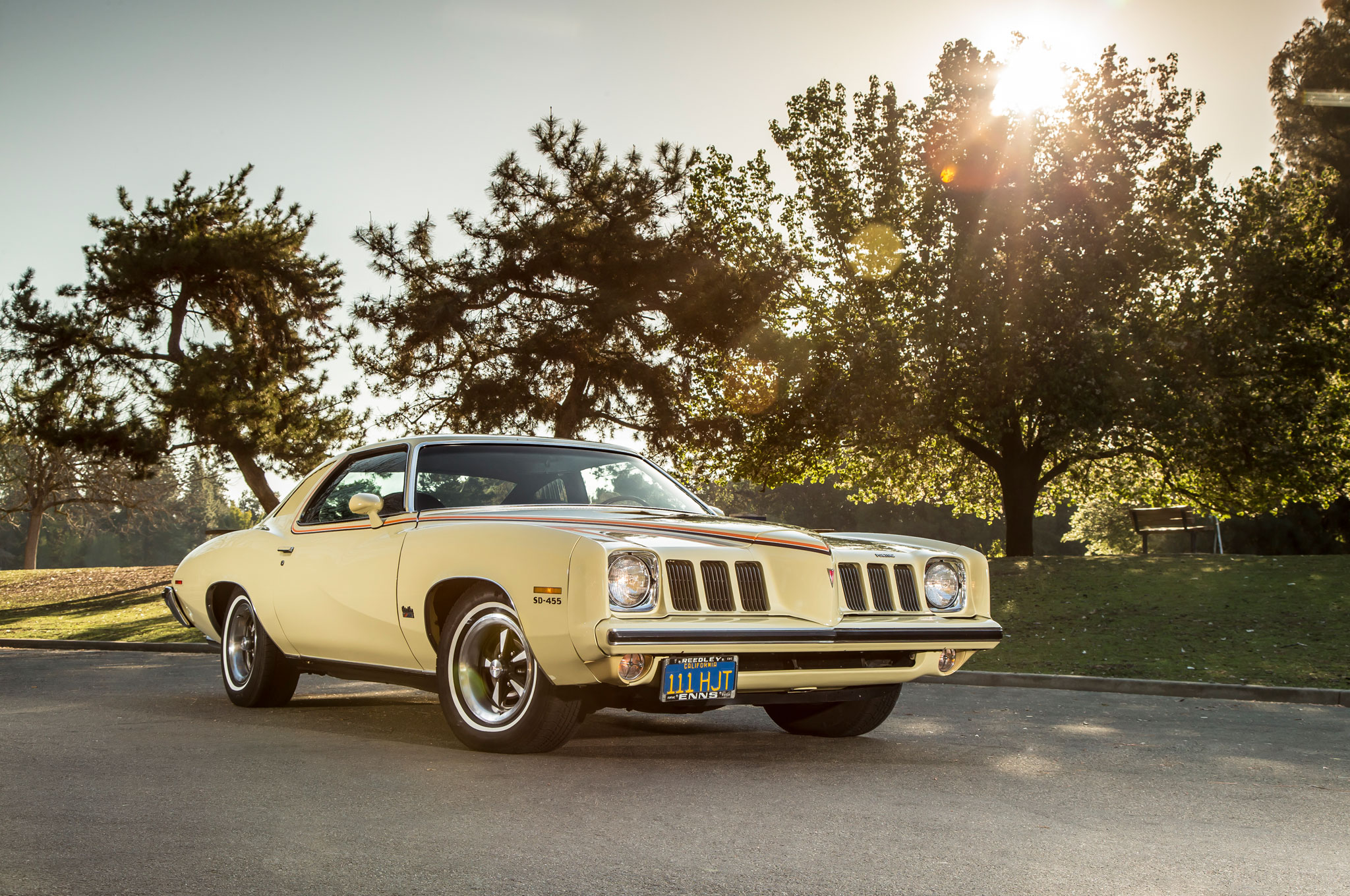 Collectible Classic  1973