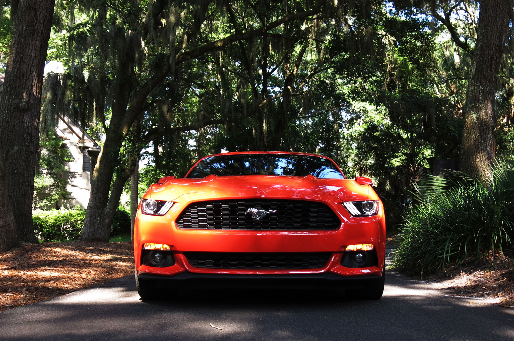 Hilton Head Toyota >> 2015 Ford Mustang EcoBoost - The Pony Rides the Dragon