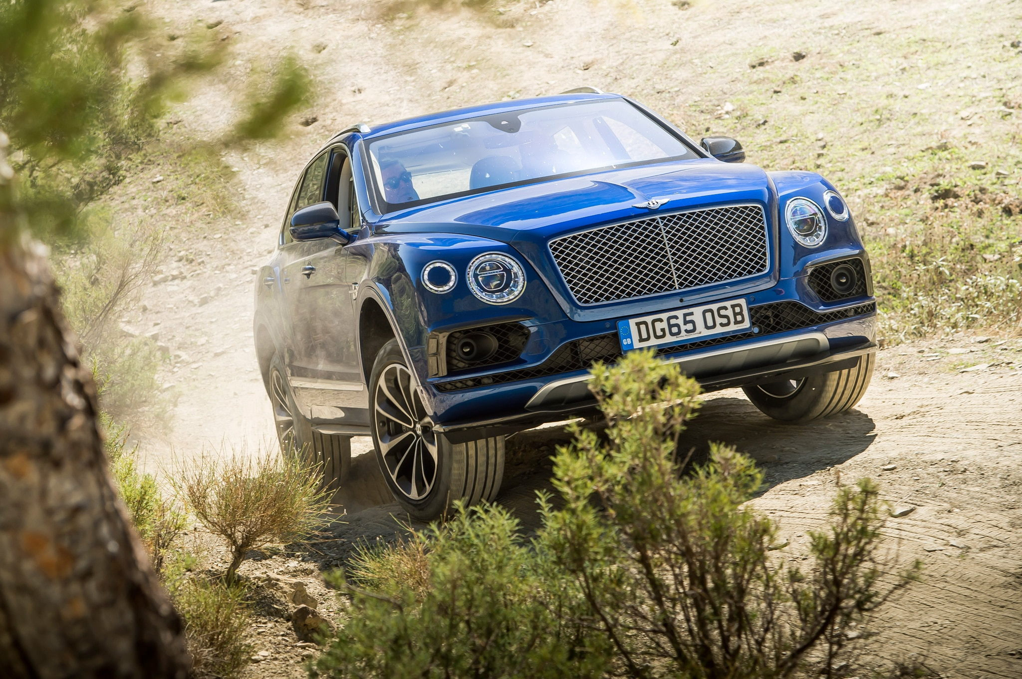 sale auto used trader continental for new cars bentley buy
