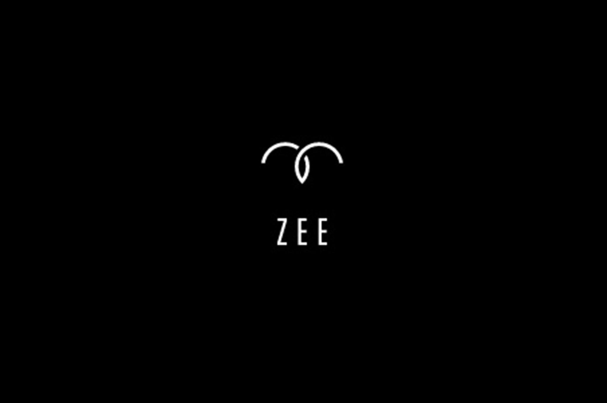 Zee Aero logo