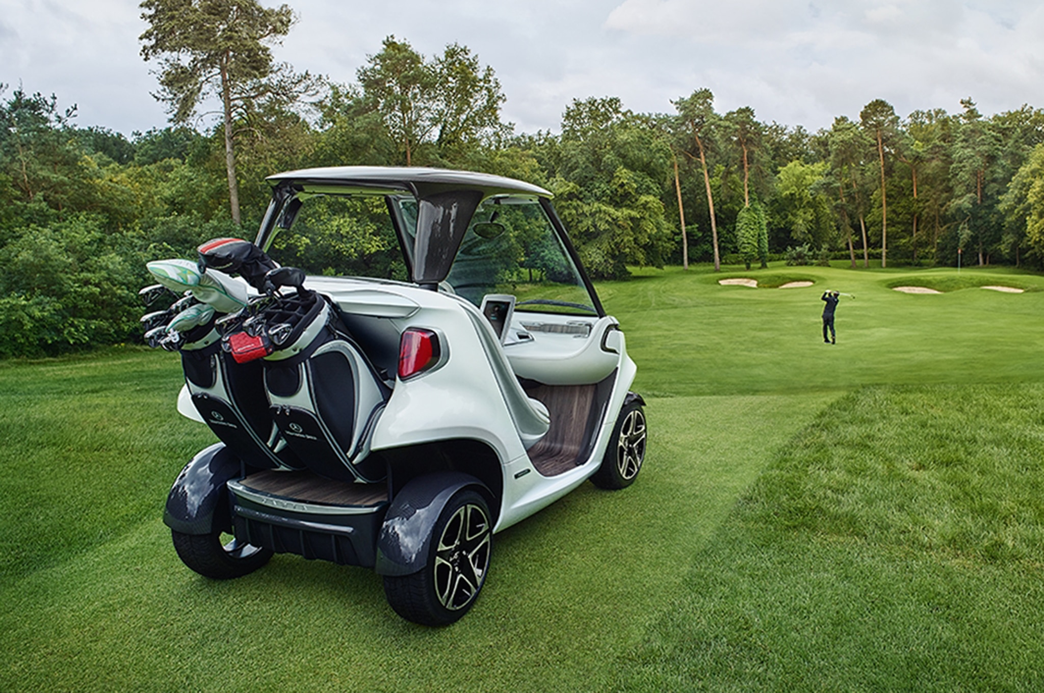 golf carts for disabled, golf carts for fire depts, golf carts vehicle, on wood golf cart trunk