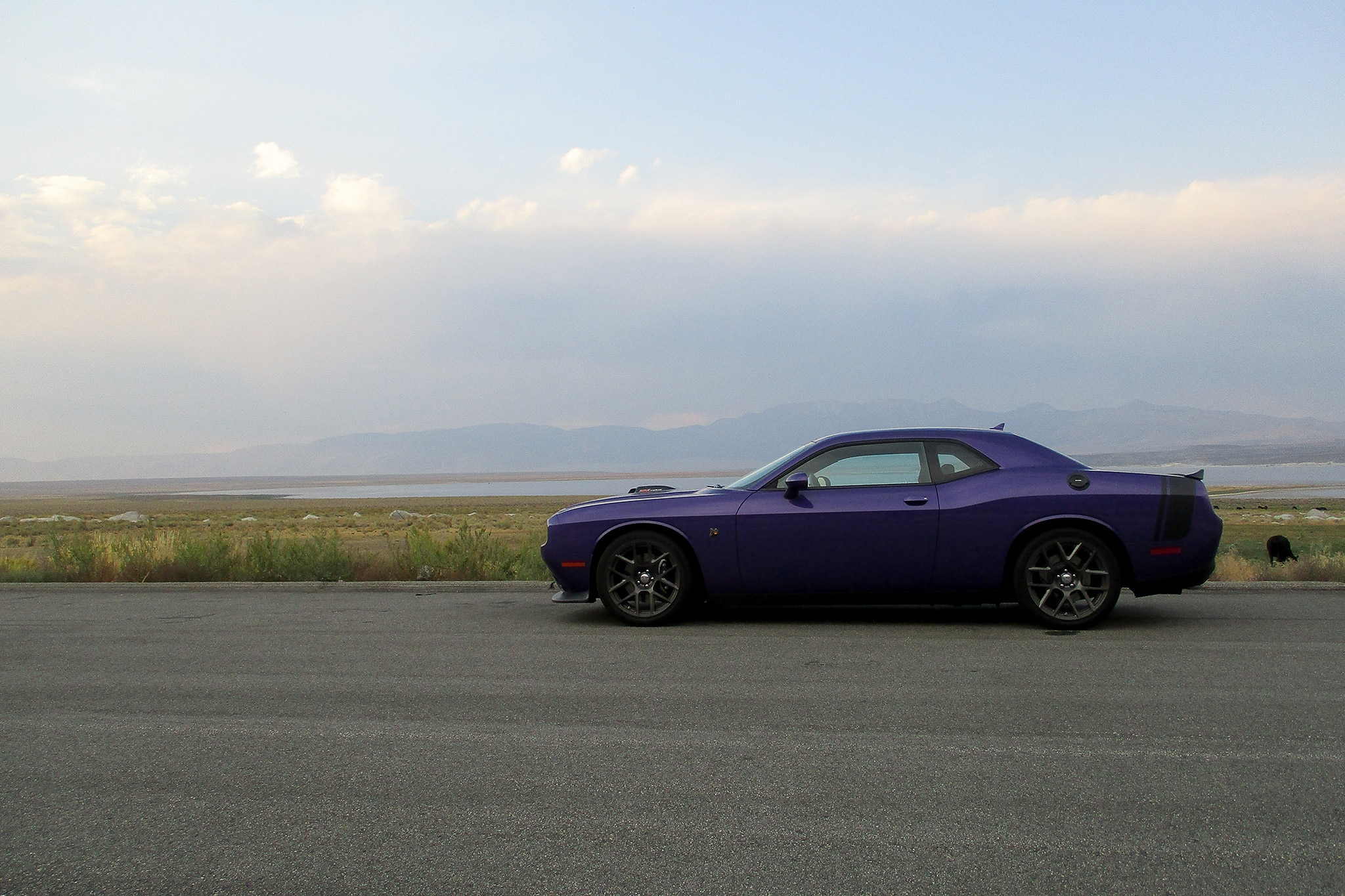 2016 Dodge Challenger 392 Hemi Scat Pack Shaker One Week With