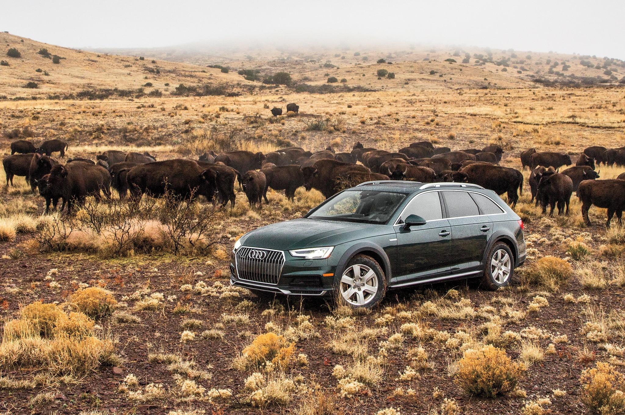 2017 Audi A4 Allroad Front Three Quarter 01