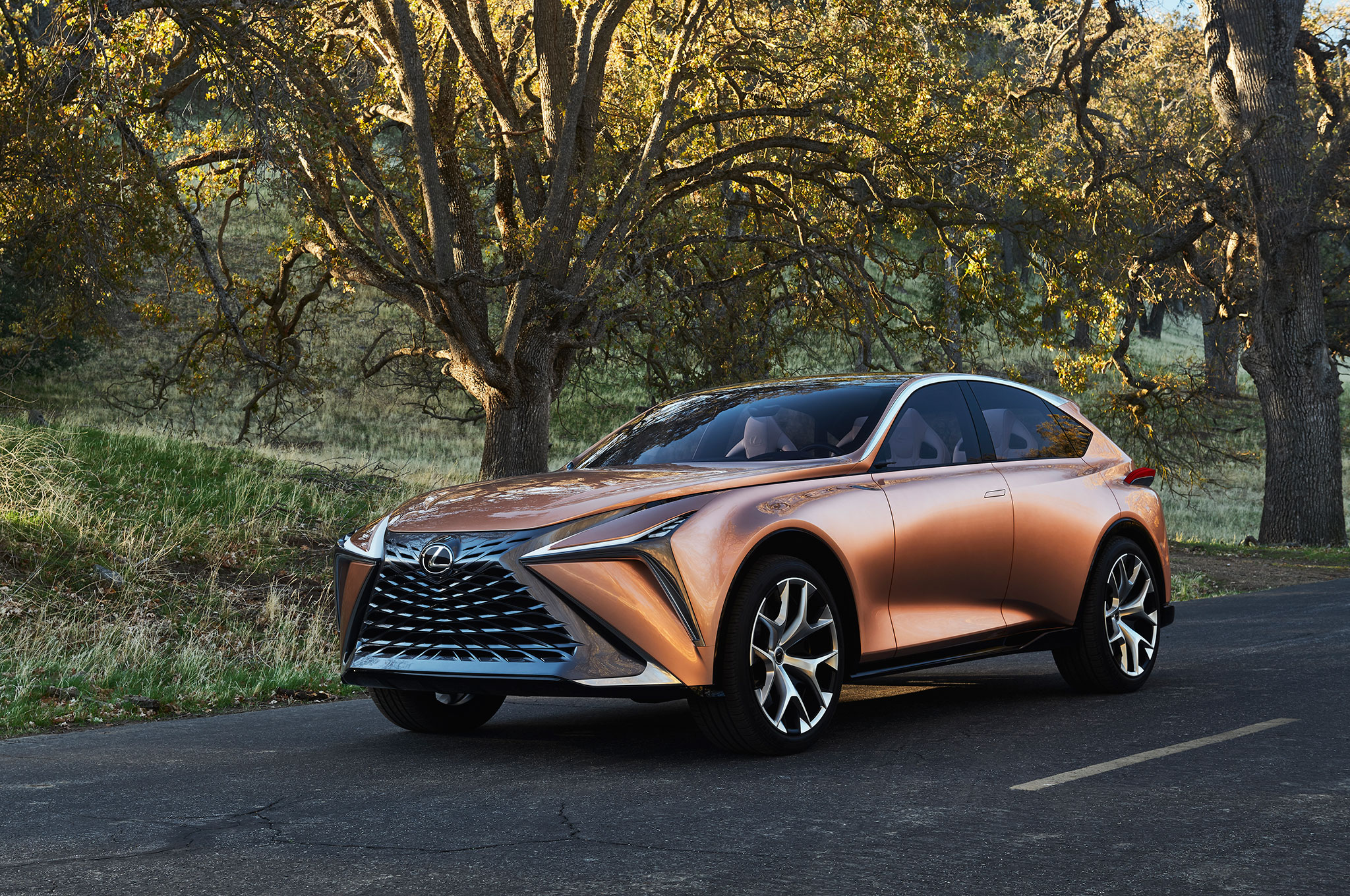 Lexus LF 1 Limitless Concept Front Side View