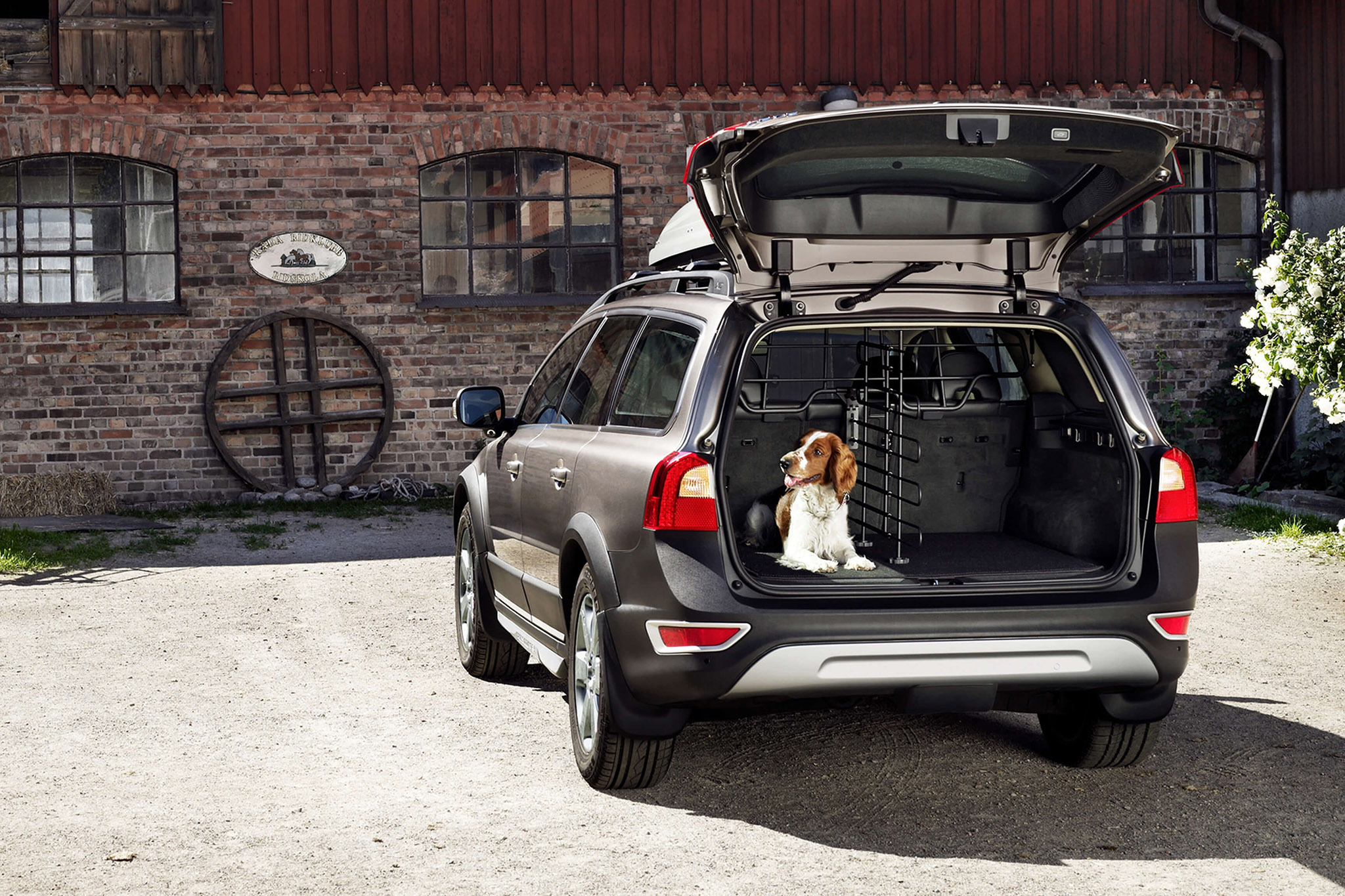 Volvo Dog Accessories