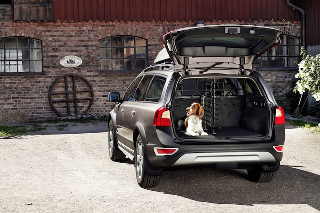 Volvo Dog Accessories