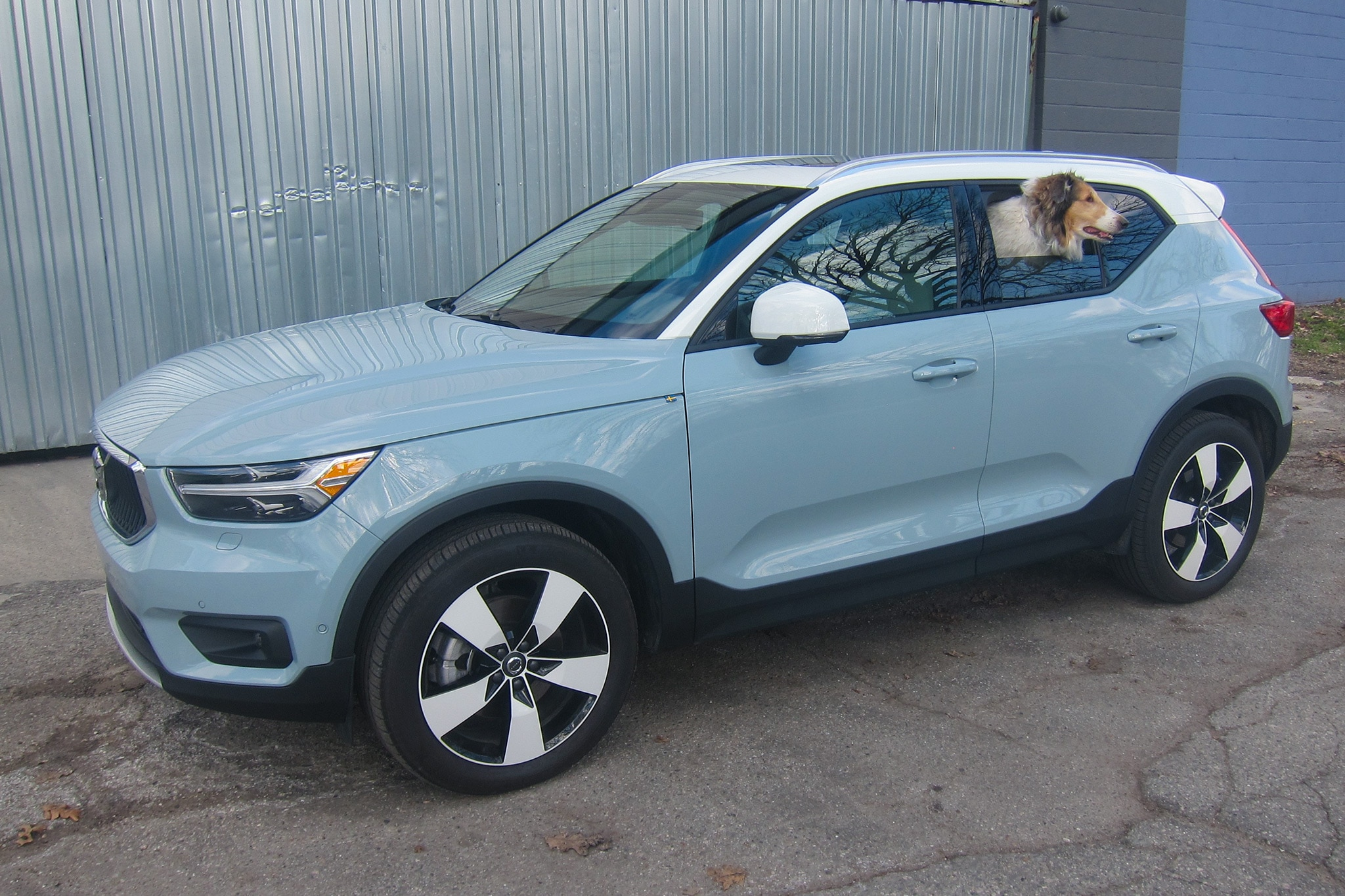 2019 Volvo Xc40 T5 Awd Momentum Quick Take Automobile