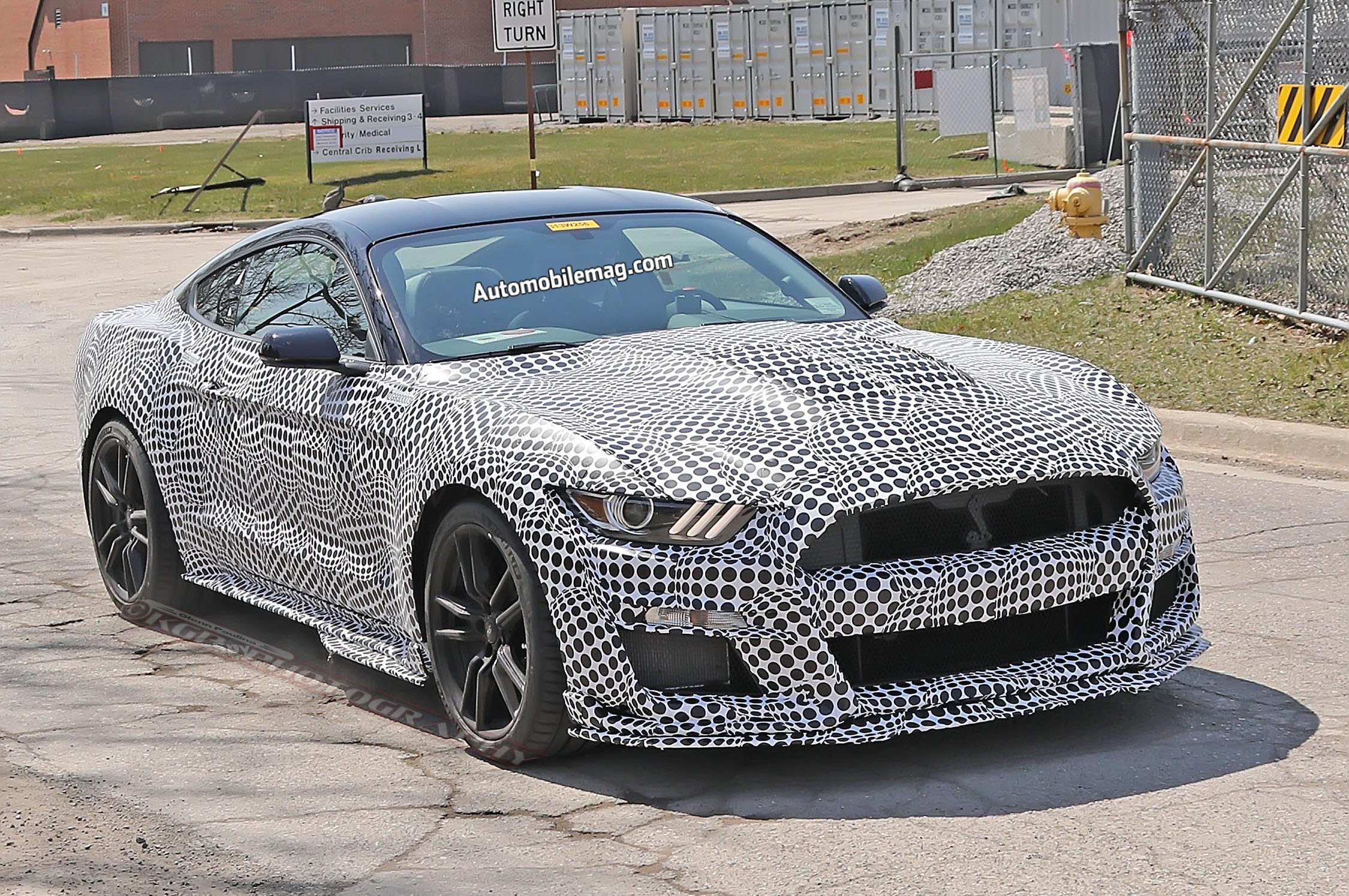 2020 Ford Mustang GT500 Front Three Quarter Look