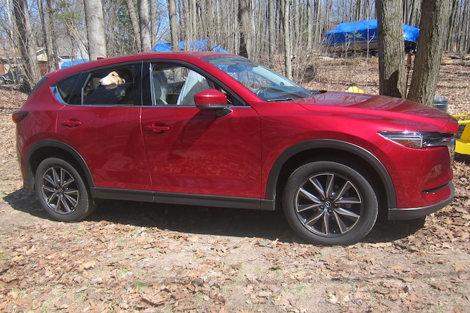 Four Seasons 2017 Mazda CX 5 Dog Update 09