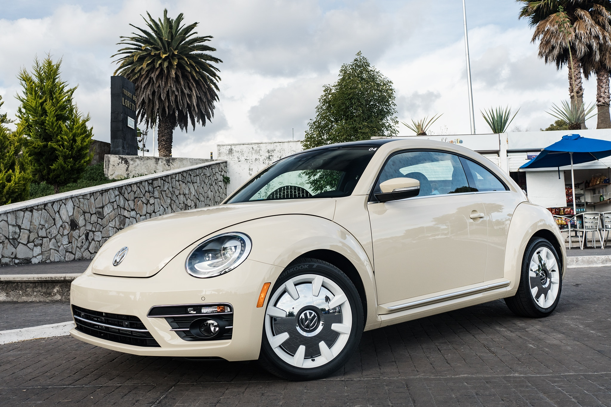Image result for 2019 beetle