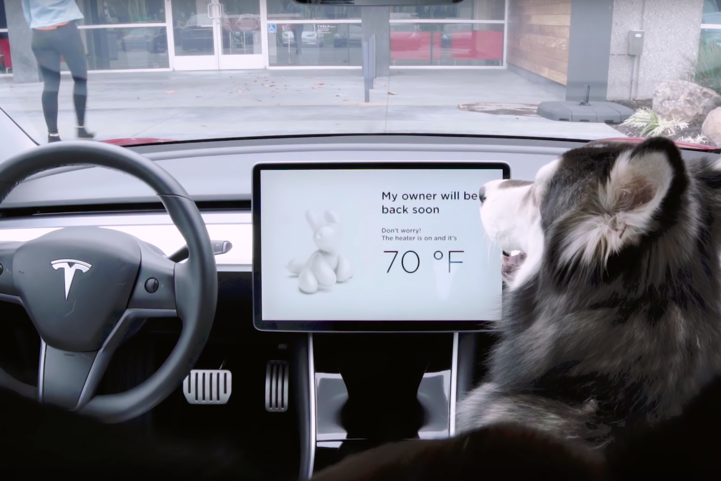 Tesla's New Modes Keep Dogs Cool, Owners' Cars Unstolen | Automobile Magazine