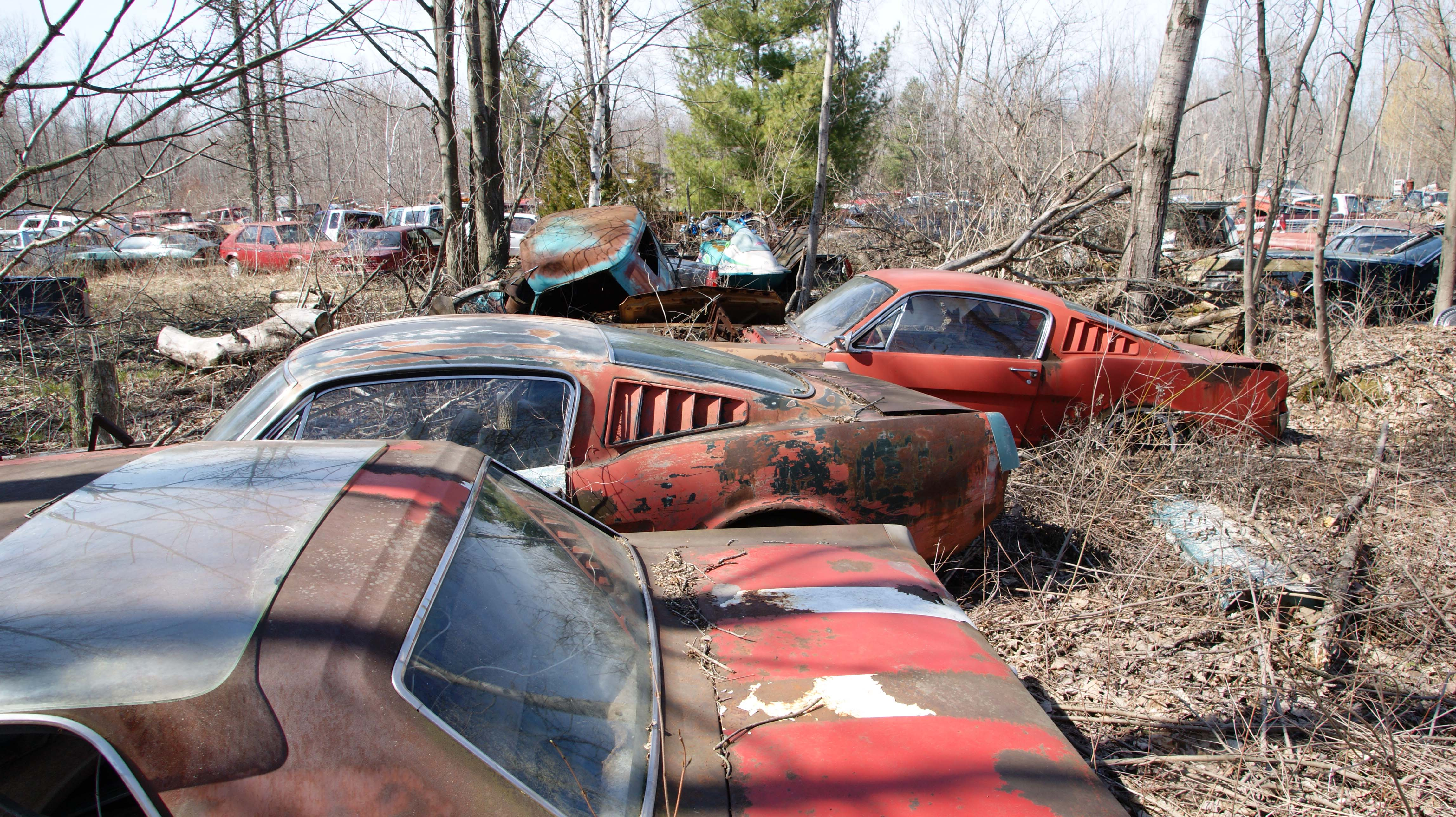 001 Michigan Junkyard 1966 Ford Mustang Fastbacks